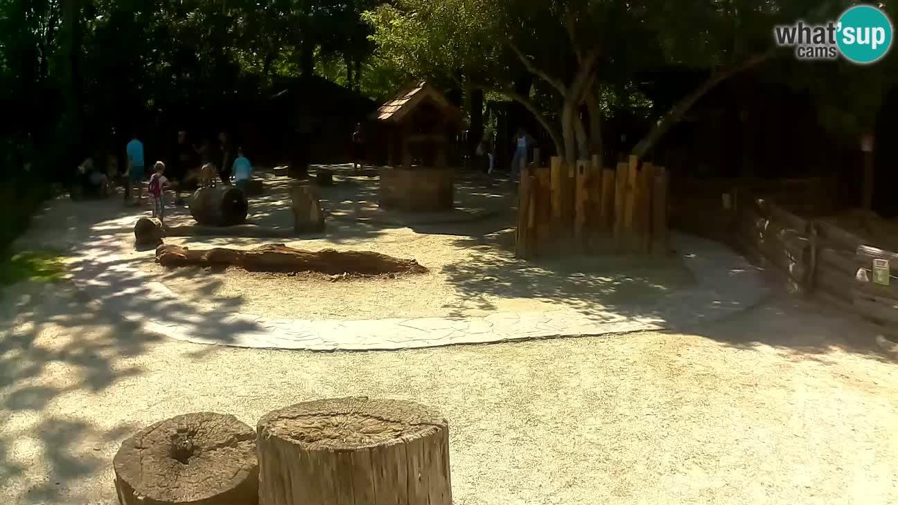 Zoo Zagreb – Haubenkapuziner