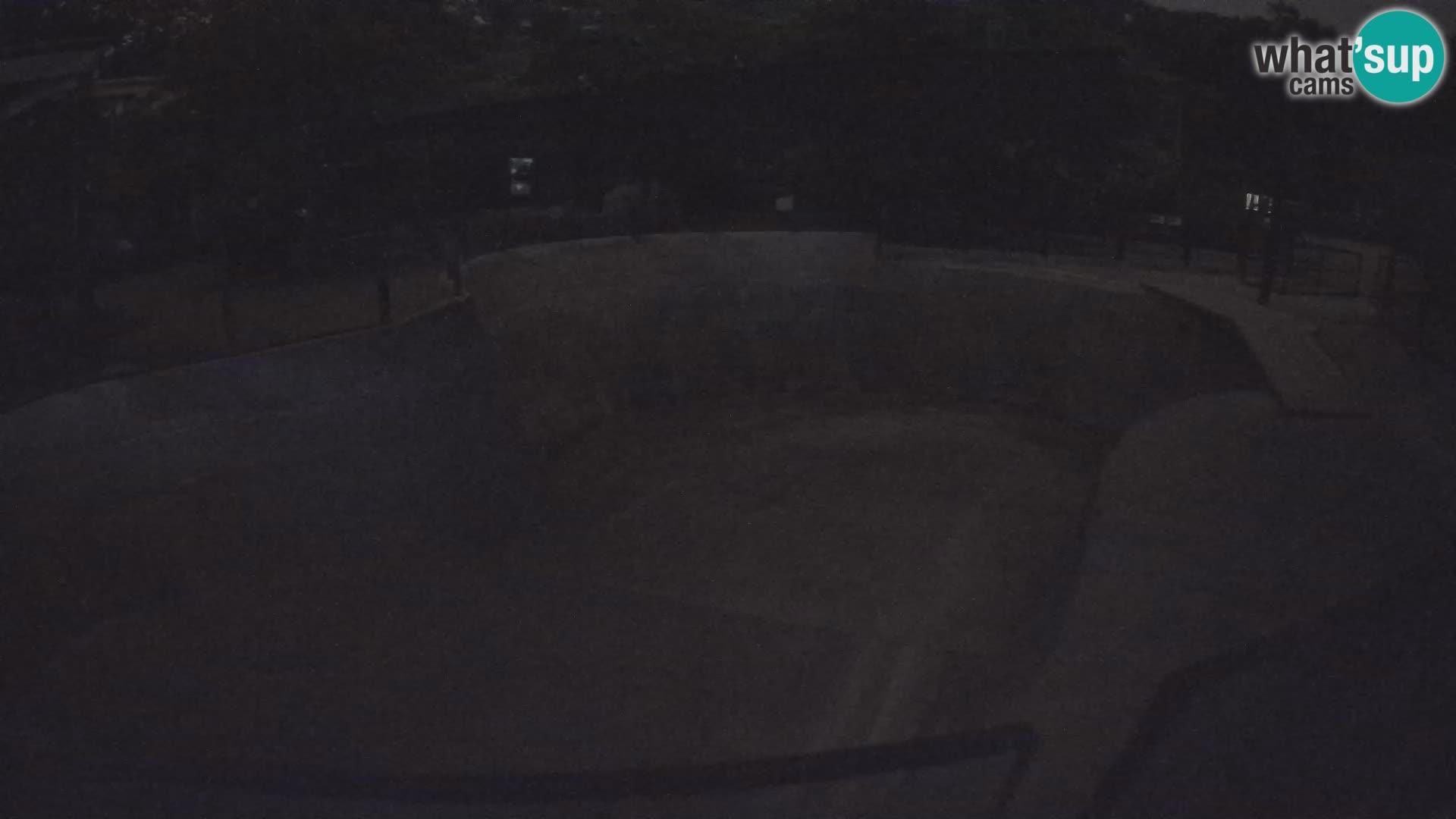 Zoo Zagreb –  León marino de California