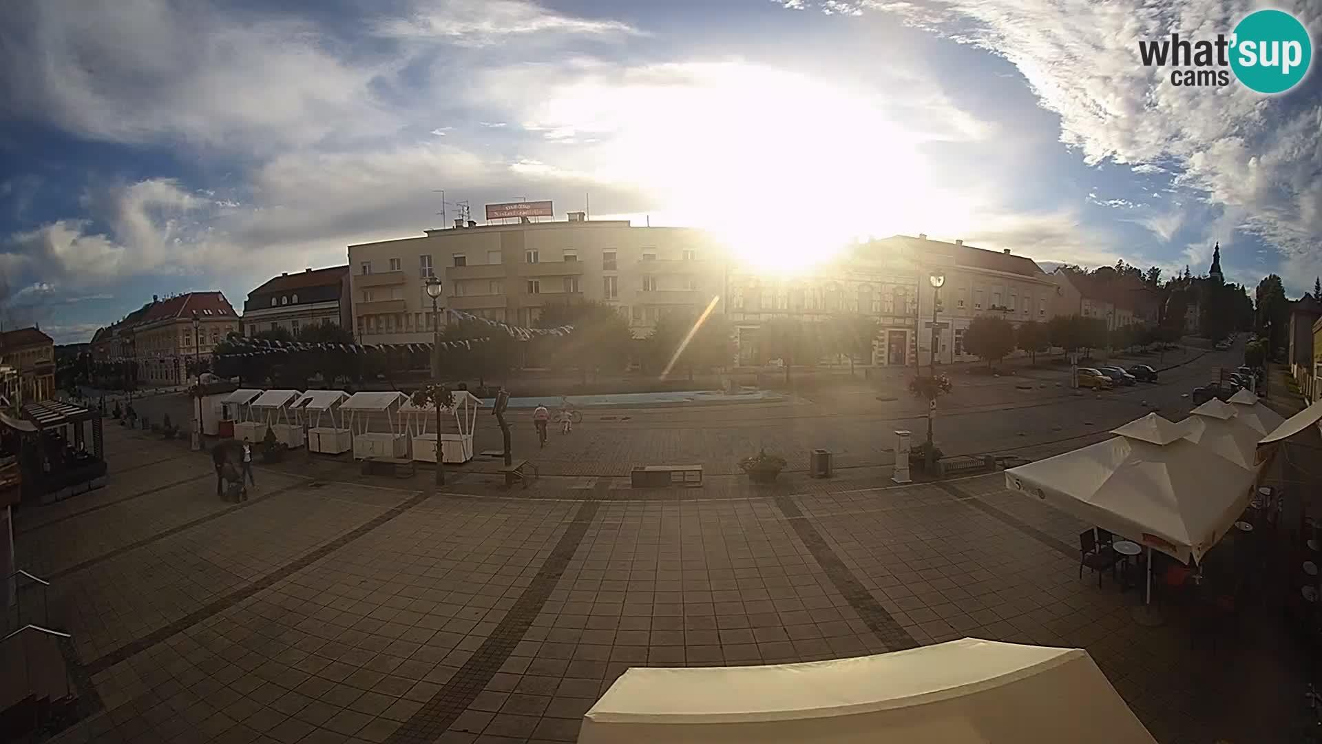 Daruva -Trg kralja Tomislava