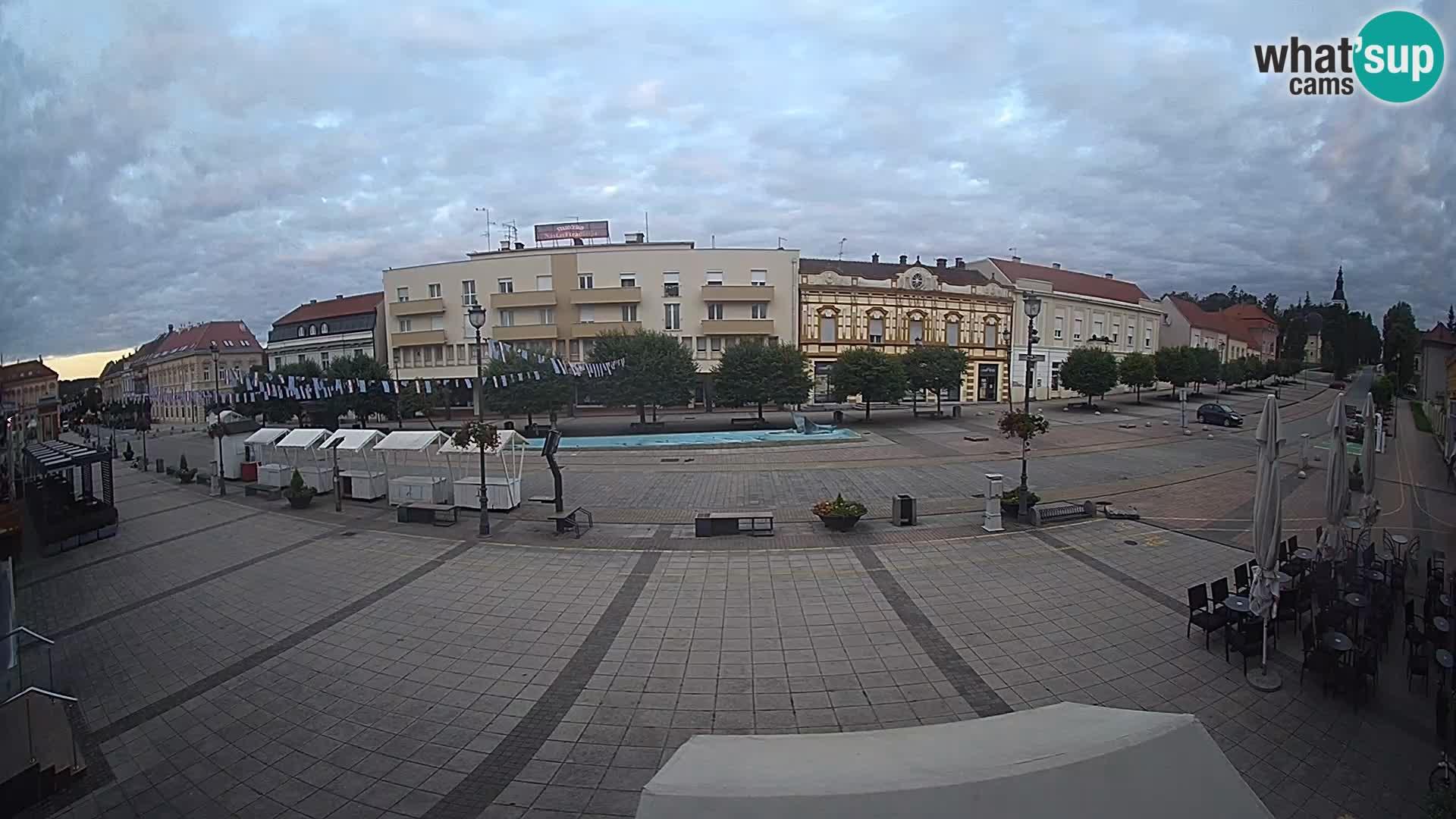 Daruva – Trg kralja Tomislava