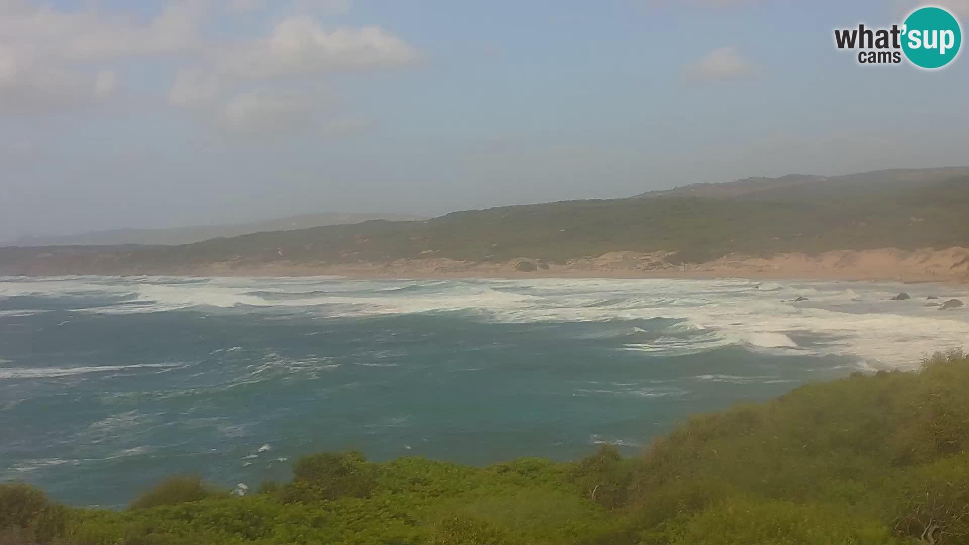 Naracu Nieddu Strand Live Webcam – Aglientu – Sardinien