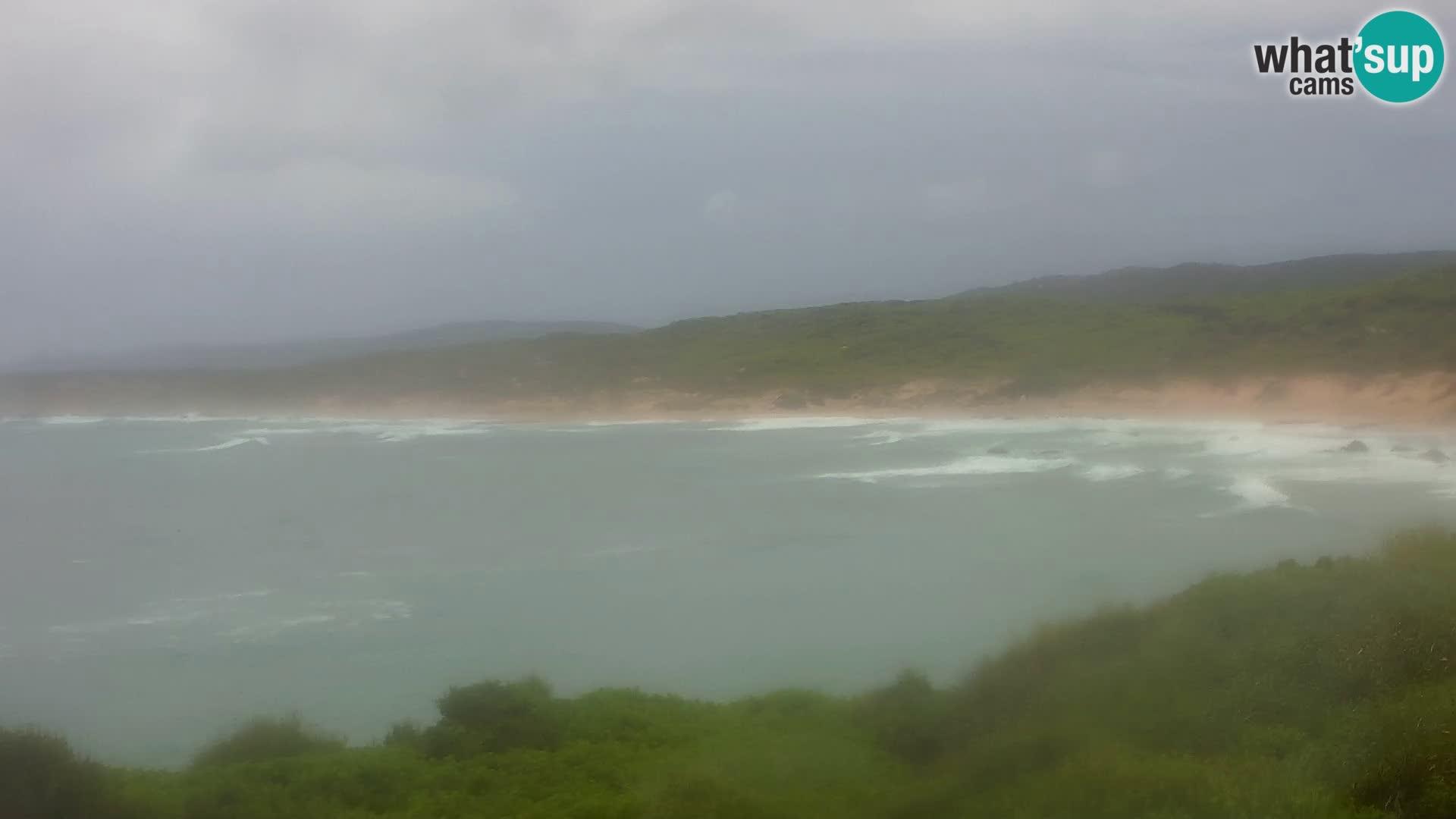 Naracu Nieddu Beach Live webcam – Aglientu – Sardinia