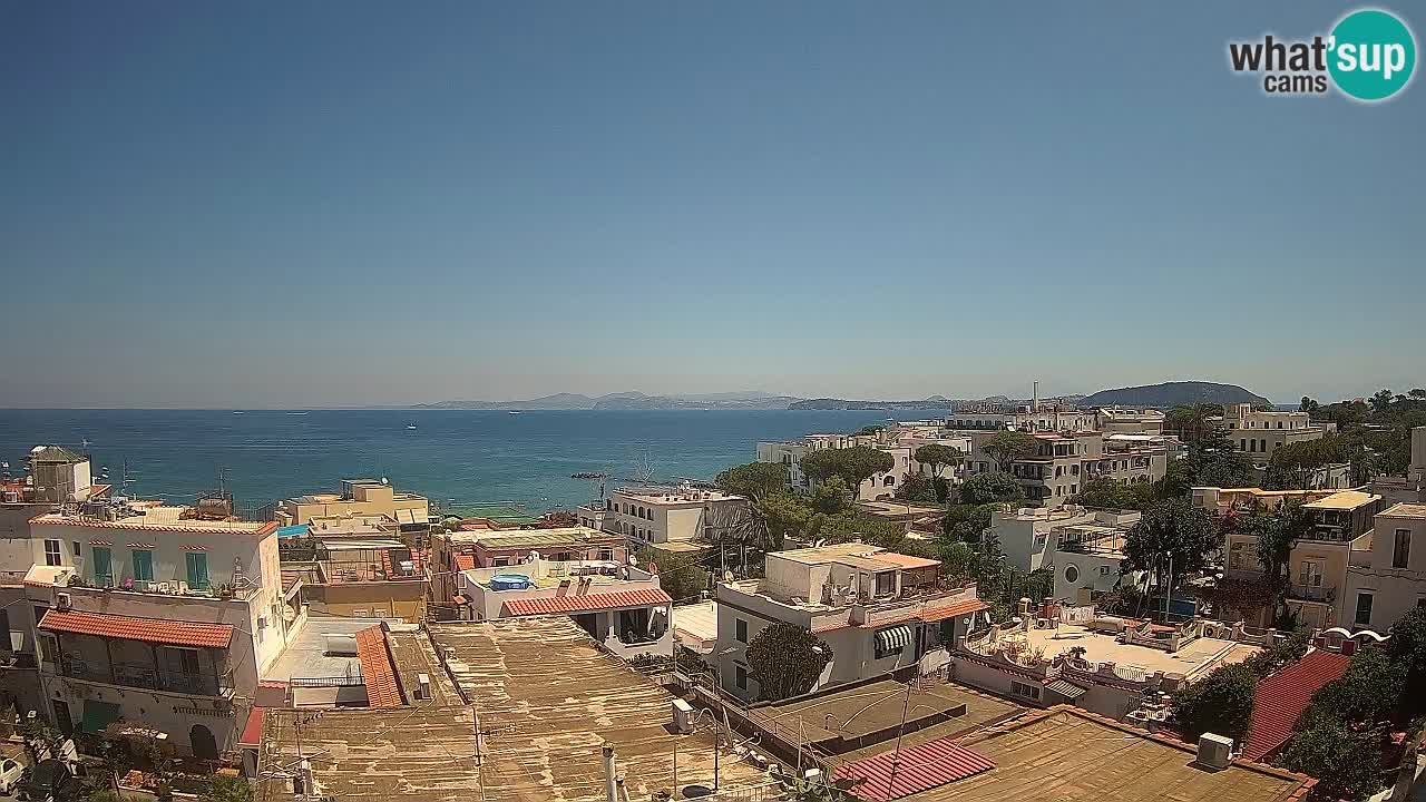 Ischia Webcam – der Golf von Neapel und die Insel Procida kamera