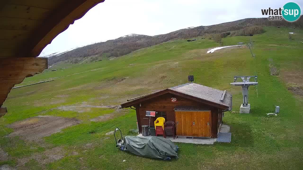 Livigno webcam – view on Livigno Ski School area – LivignoGO
