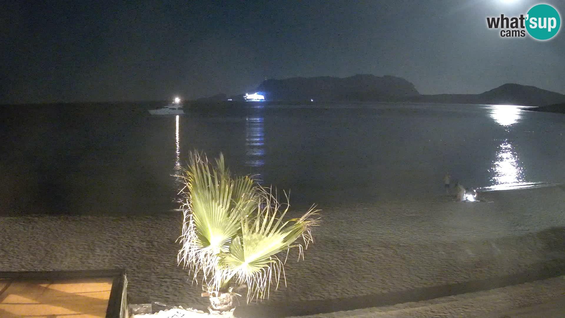 The beach of Pittulongu live webcam Olbia – Sardinia – Italy