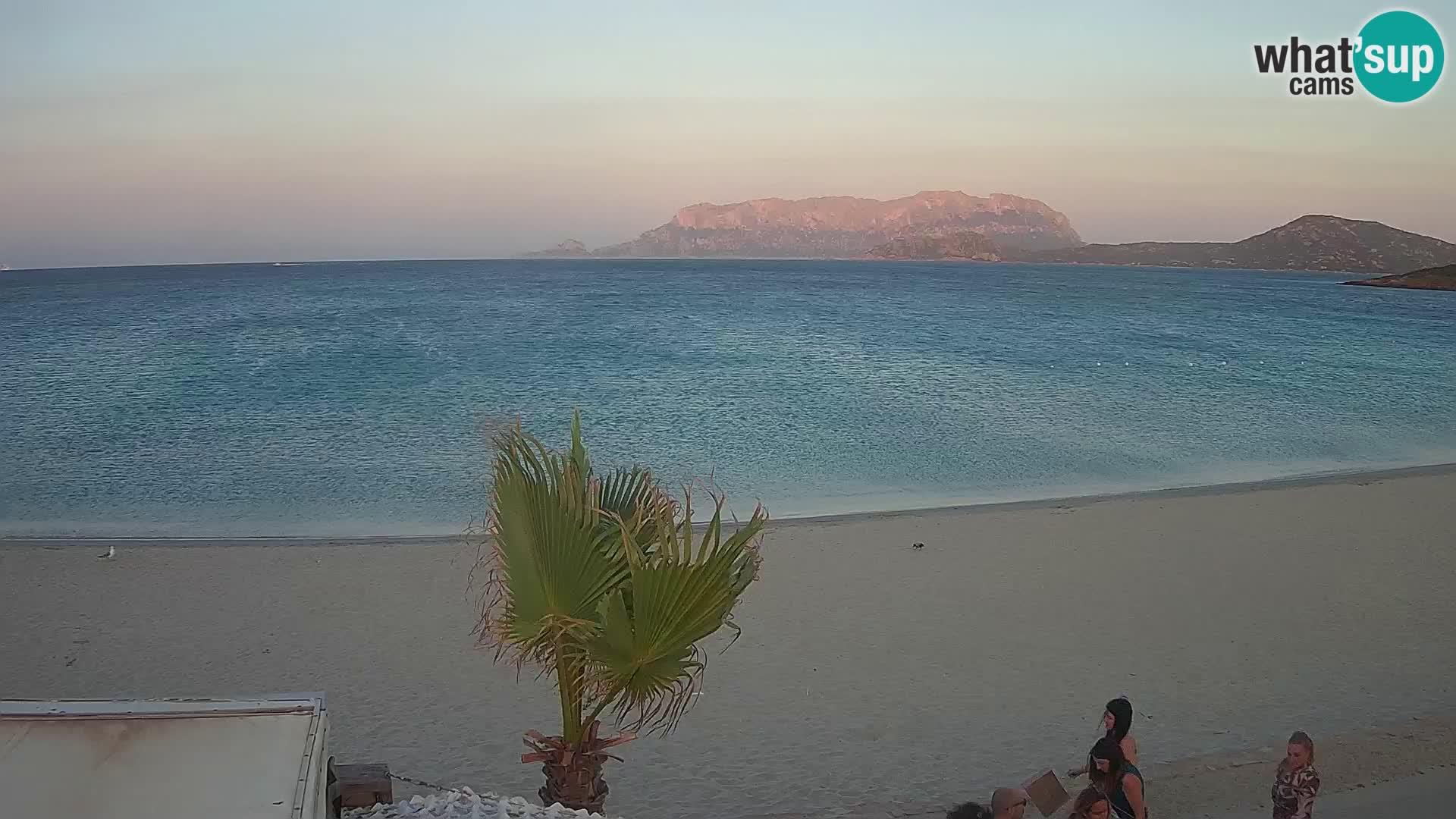 Plaža Pittulongu spletna kamera v živo Olbia – Sardinija – Italija