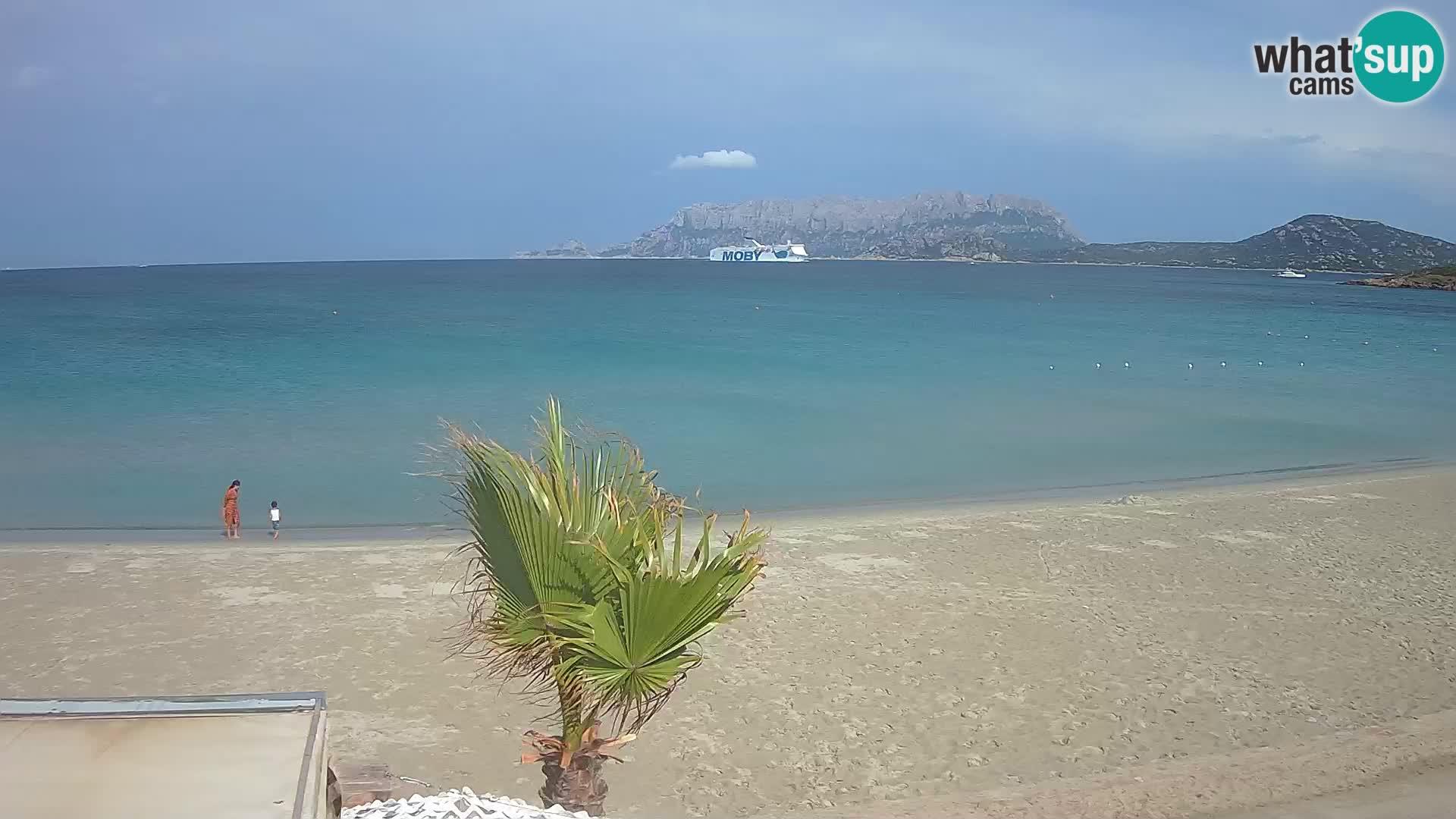 Der Strand von Pittulongu Live-Webcam Olbia – Sardinien – Italien