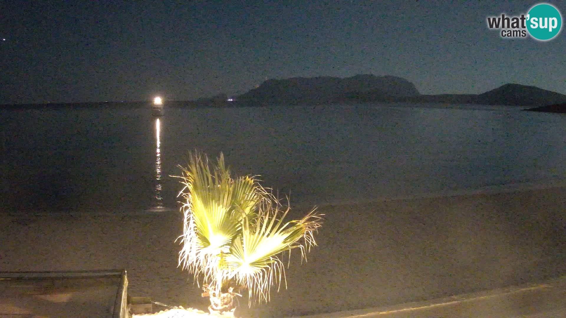 La plage de Pittulongu en direct webcam Olbia – Sardaigne – Italie