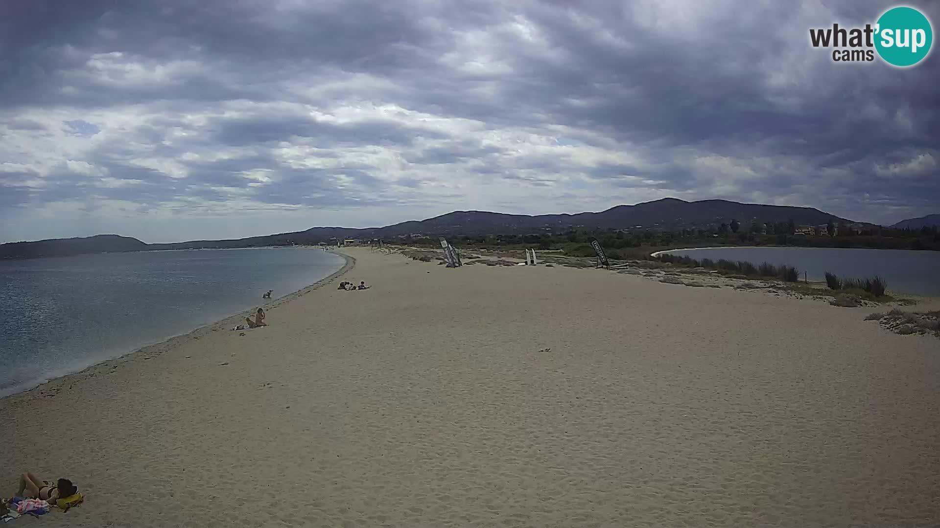 Olbia camera en vivo playa Le Saline – Cerdeña – Italia