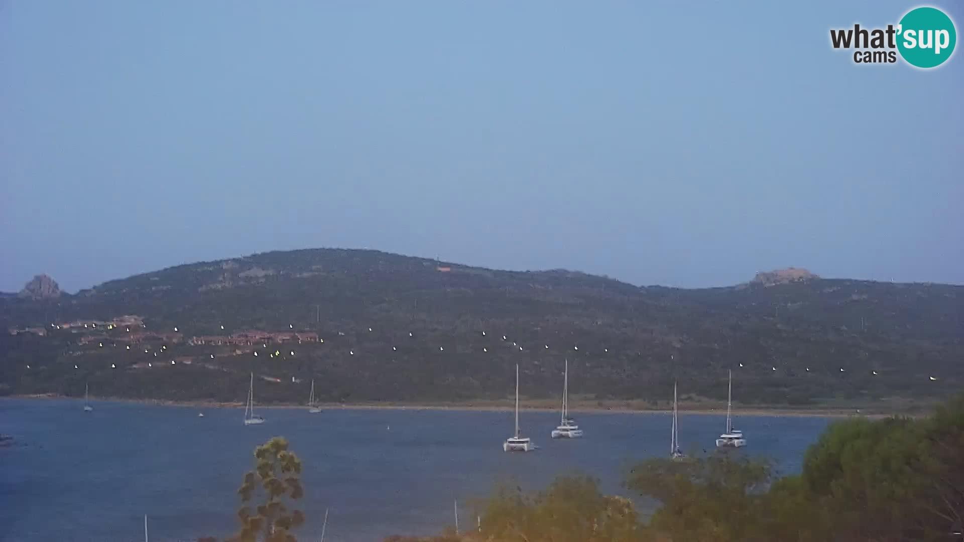 Camera en vivo Porto Pollo playa Cerdeña
