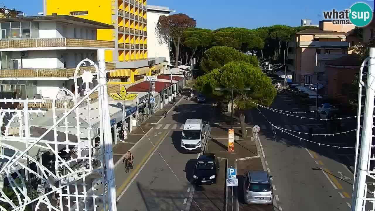 Livecam Rosolina mare