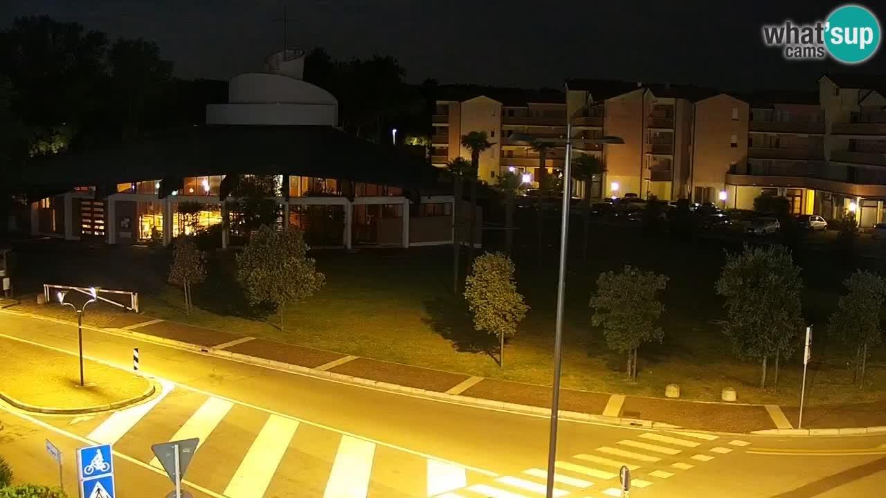 Webcam Rosolina mare Stadtzentrum