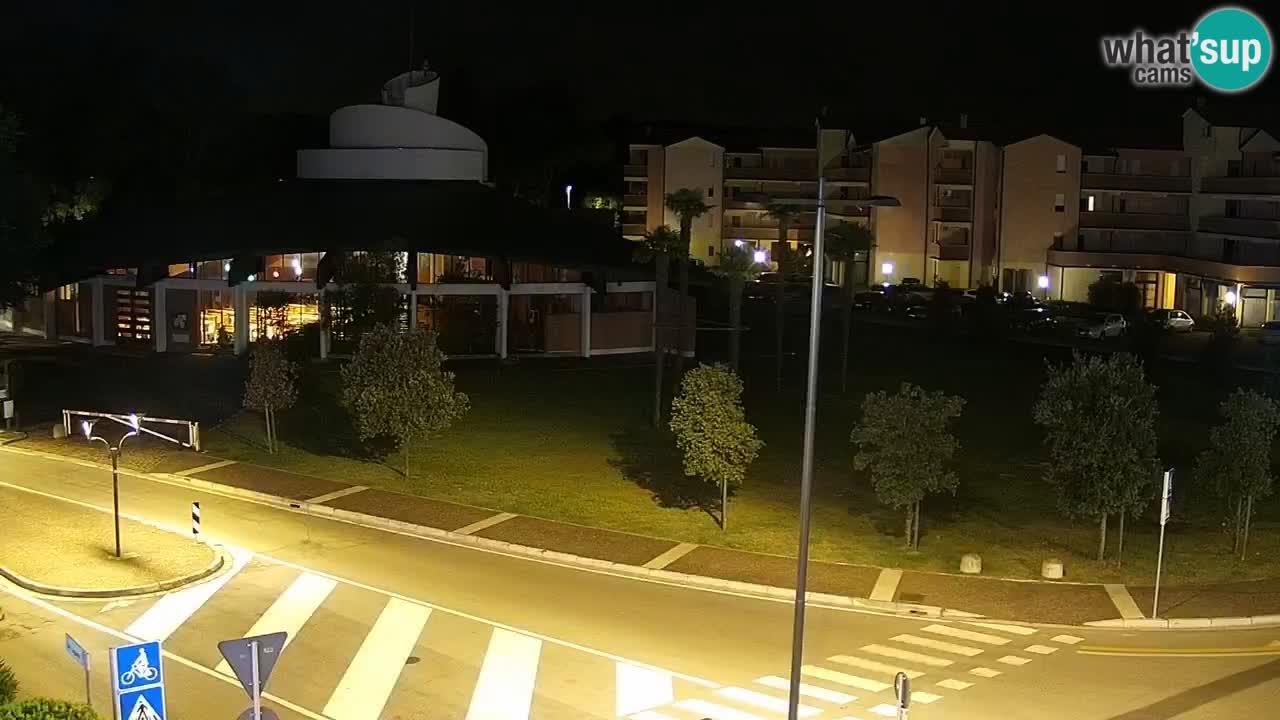 Camera en vivo Rosolina mare