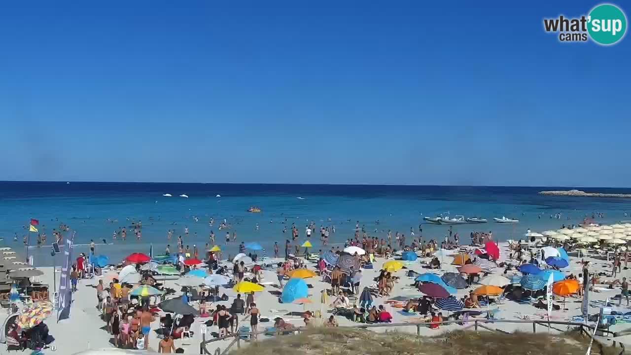 Beach de L'Isuledda – San Teodoro (OT) – Sardinia