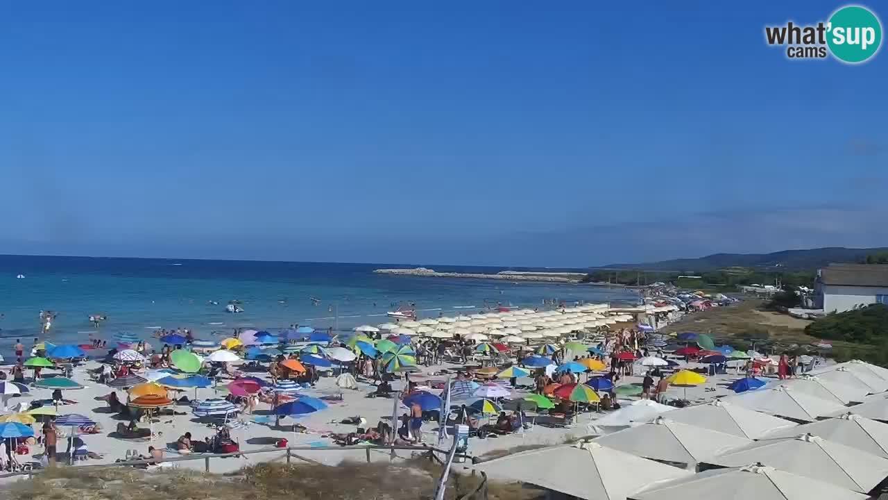 Plage de L'Isuledda – San Teodoro (OT) – Sardaigne