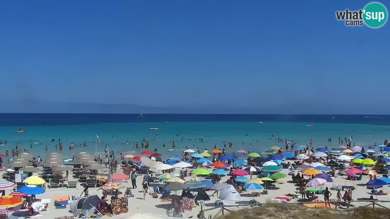 Spiaggia de L'Isuledda – San Teodoro (OT) – Sardegna
