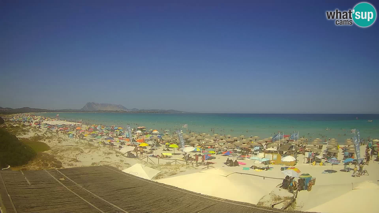 Plaža de L'Isuledda – San Teodoro (OT) – Sardinija