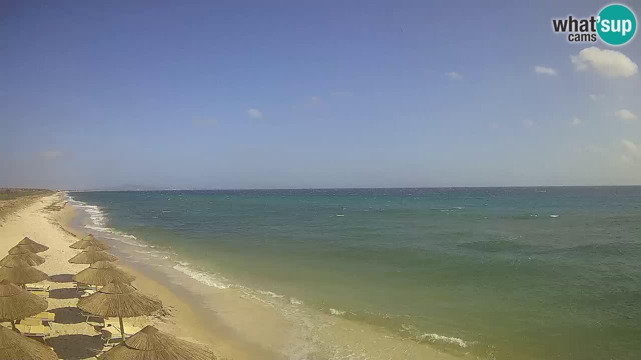 Playa Le Saline camera en vivo Stintino – Cerdeña