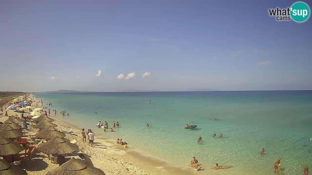 Spiaggia Le Saline webcam Stintino – Sardegna