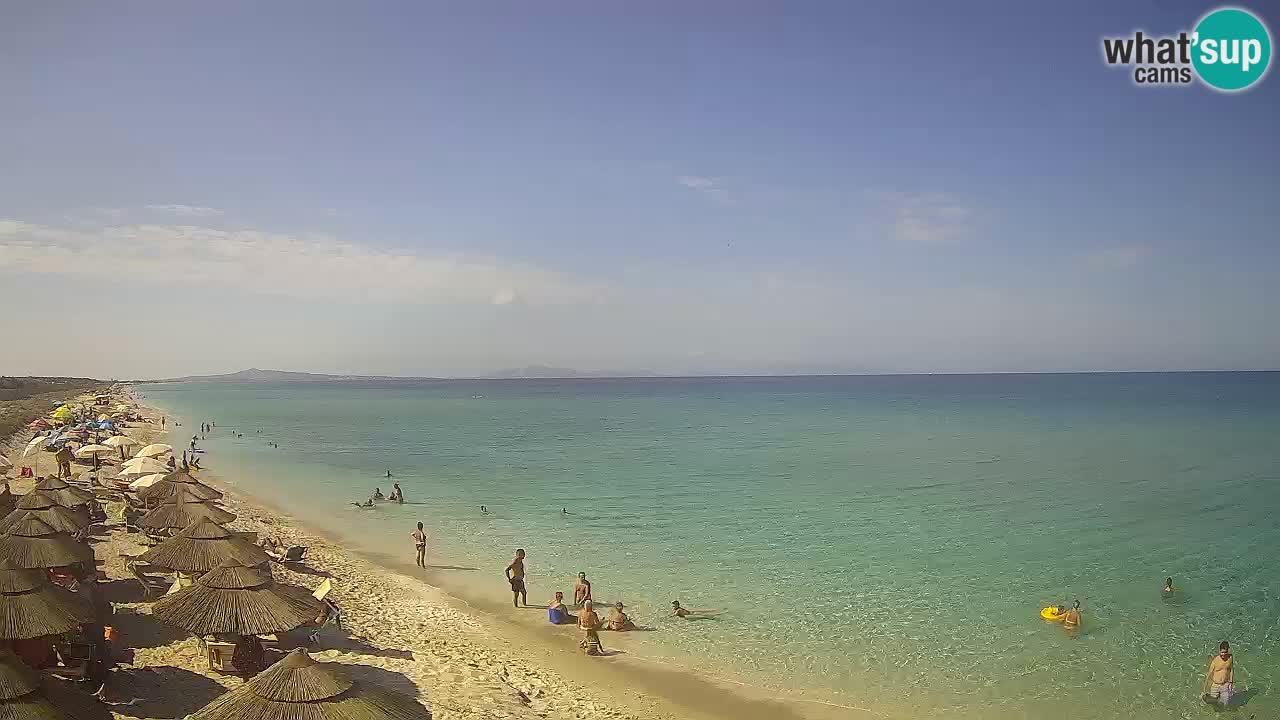 Plaža Le Saline spletna kamera Stintino – Sardinija