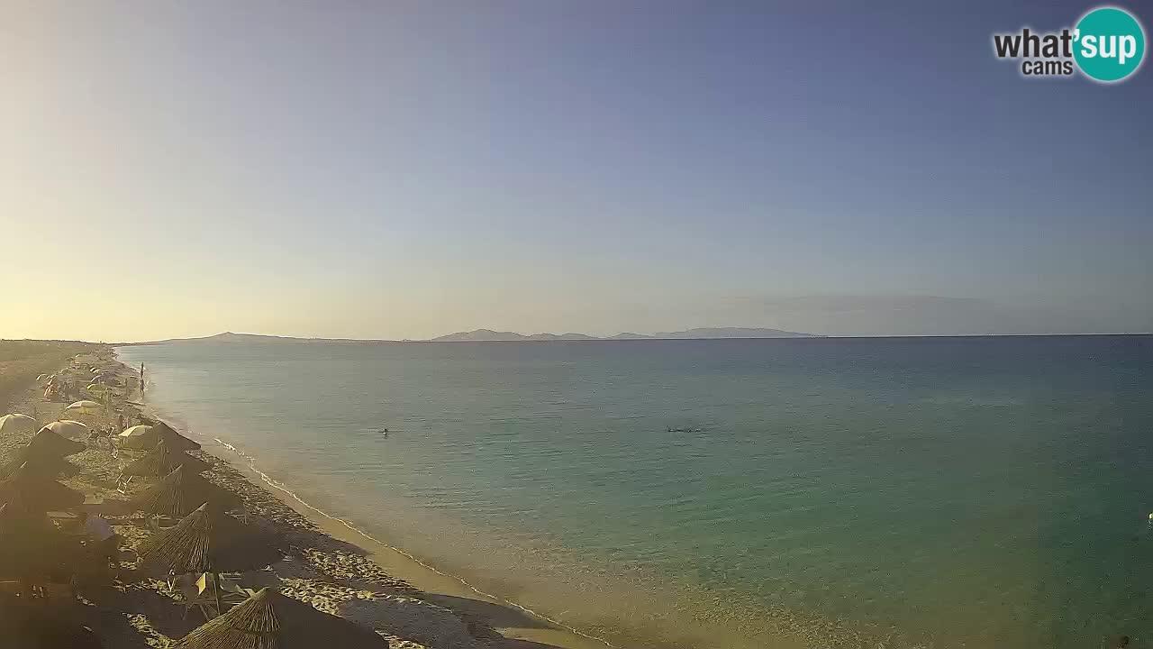 Beach Le Saline webcam live Stintino – Sardinia