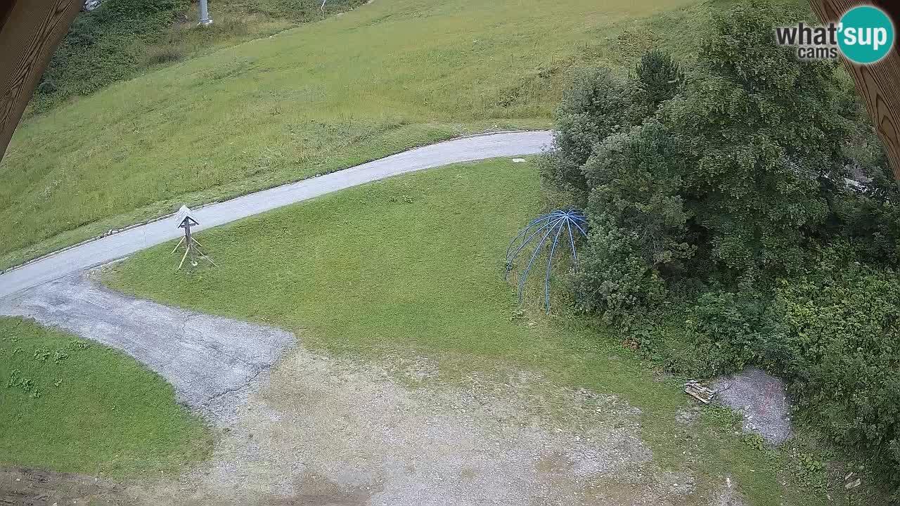 Smučišče Zoncolan – Goles