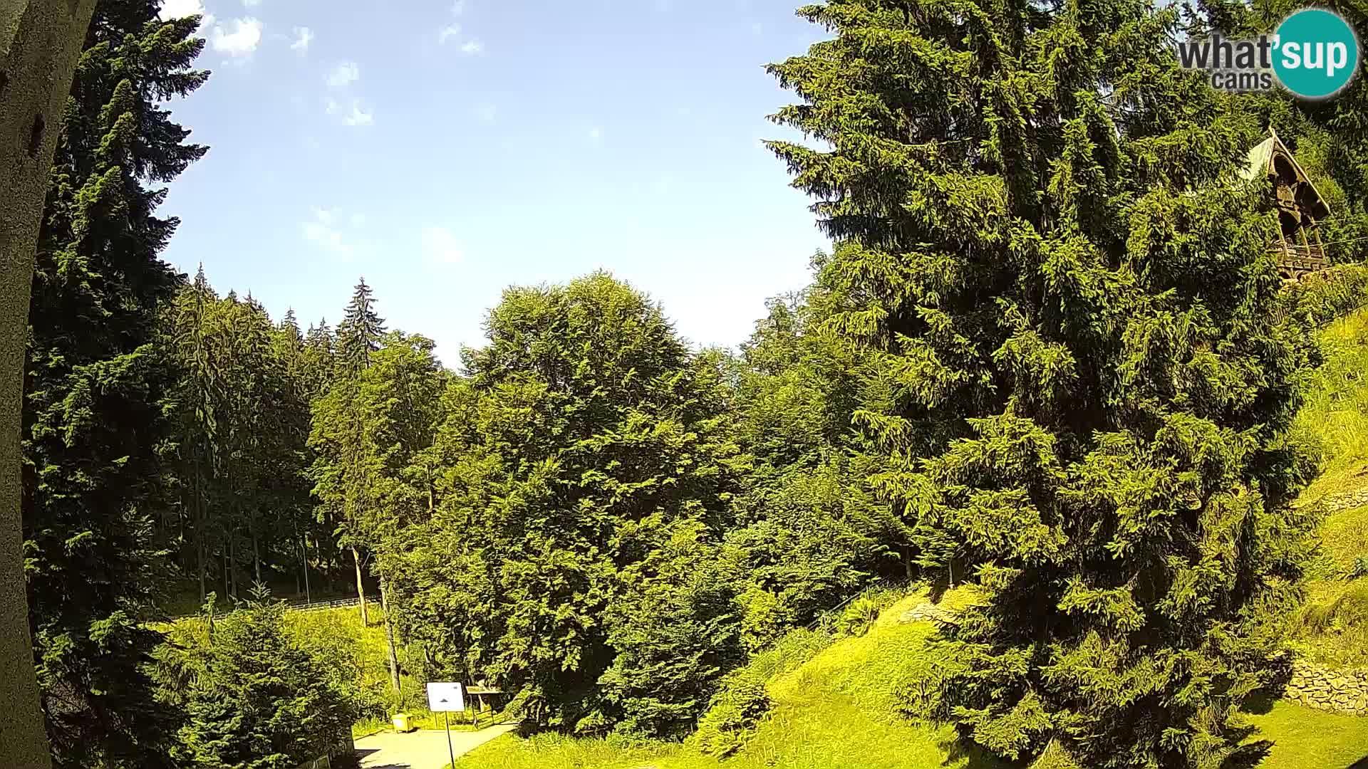 Web kamera Spalona – skijaški center u živo planine Bystrzycki
