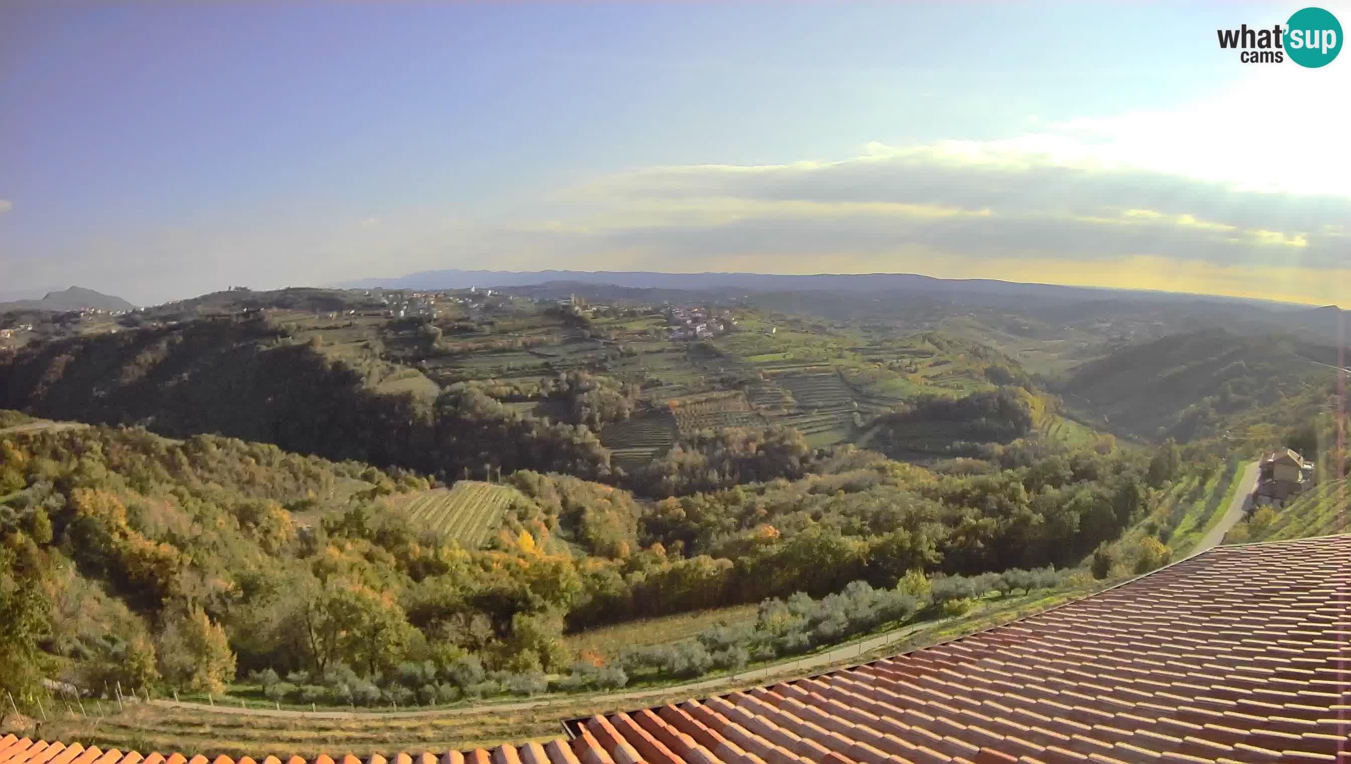 Vue imprenable sur Brda – Slovénie – Webcam Višnjevik