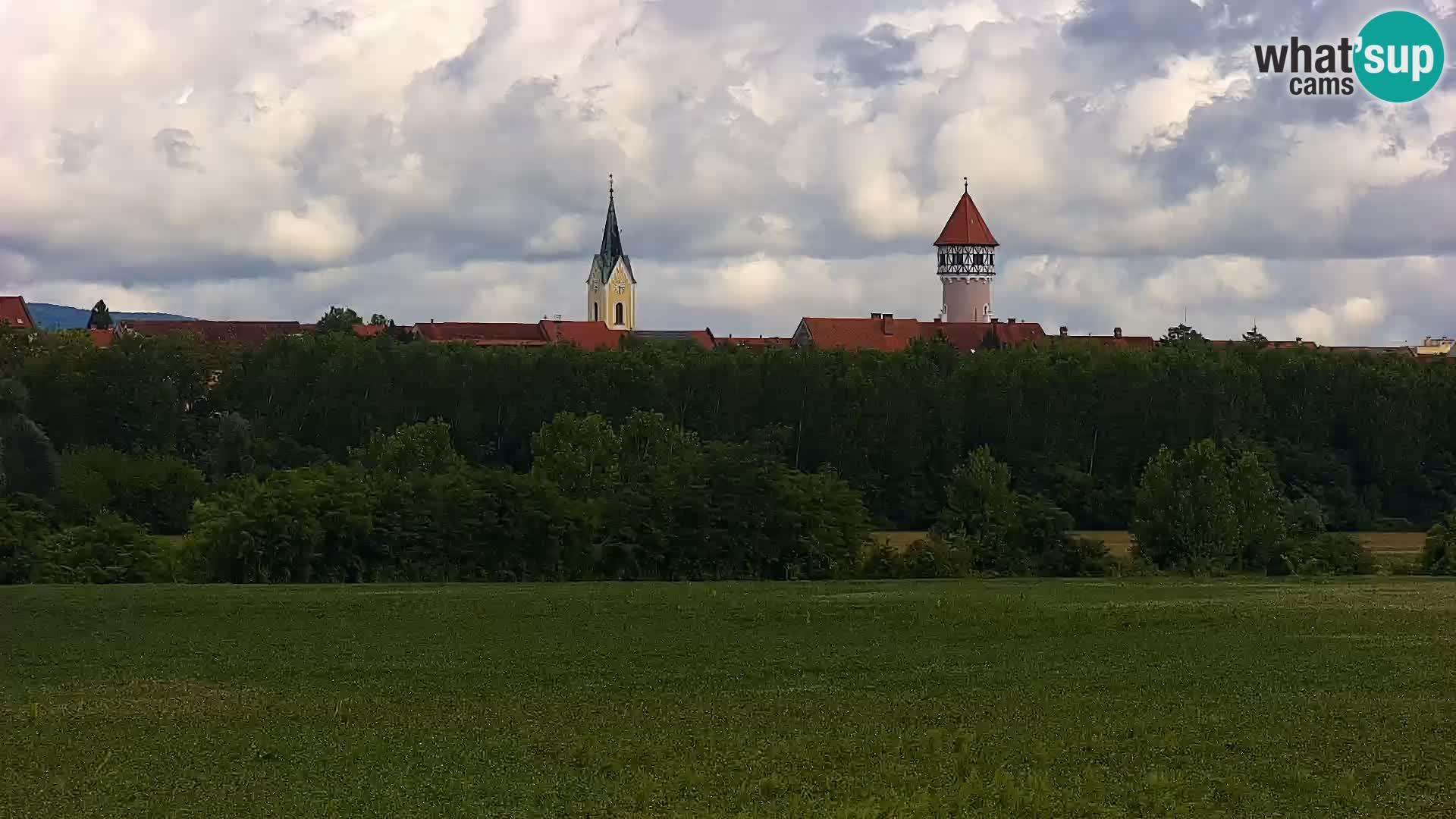 Web kamera uživo Jezero Brežice na rijeci Savi – Slovenija