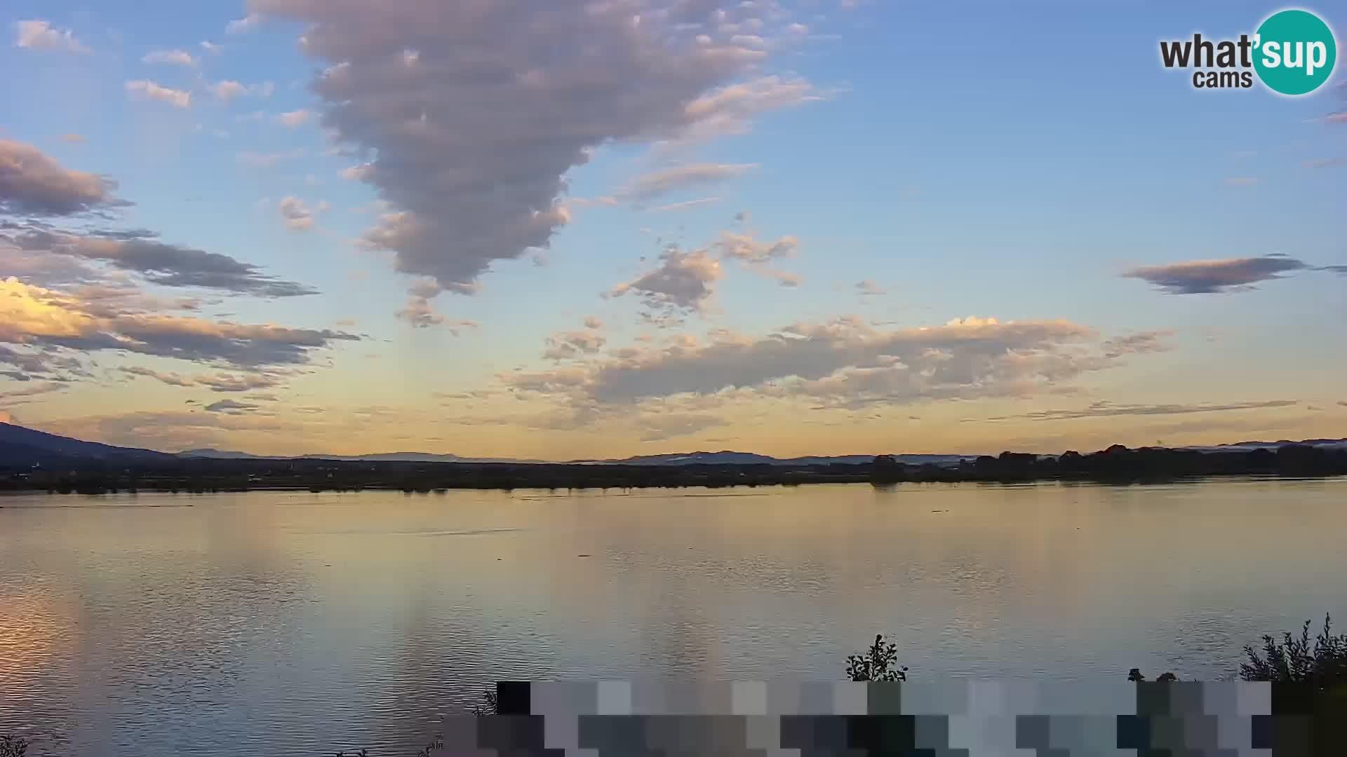 Webcam en direct Lac Brežice sur la rivière Sava – Slovénie