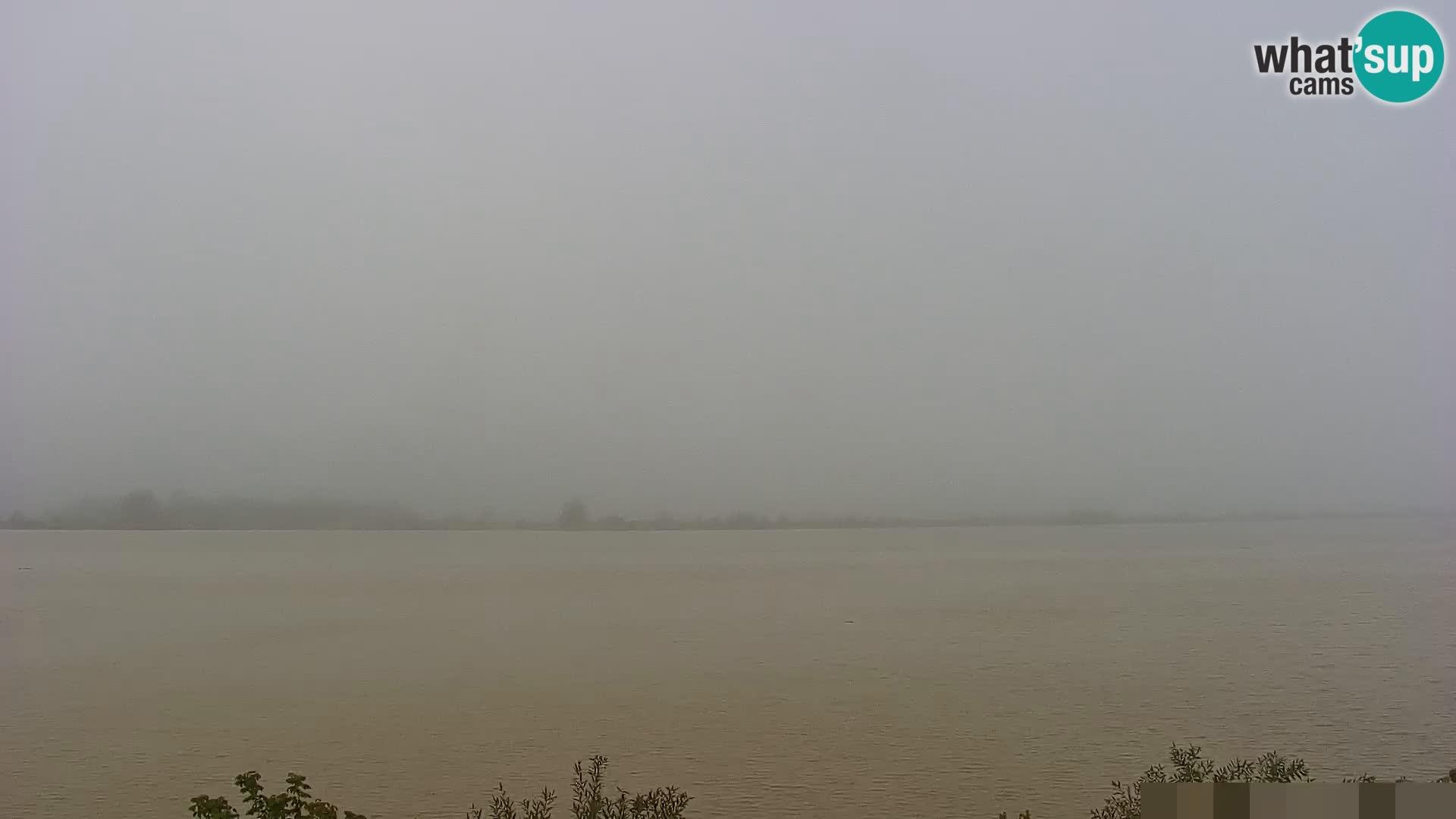 Webcam en vivo lago Brežice en el río Sava – Eslovenia