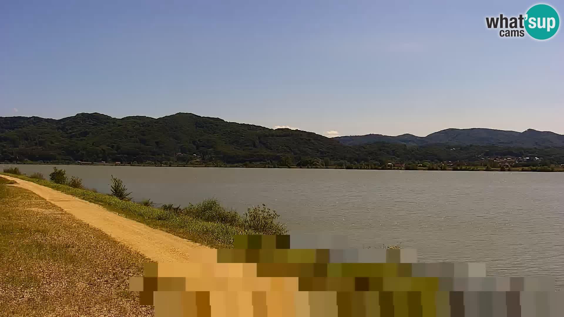 Live Webcam Brežice See am Fluss Sava – Slowenien