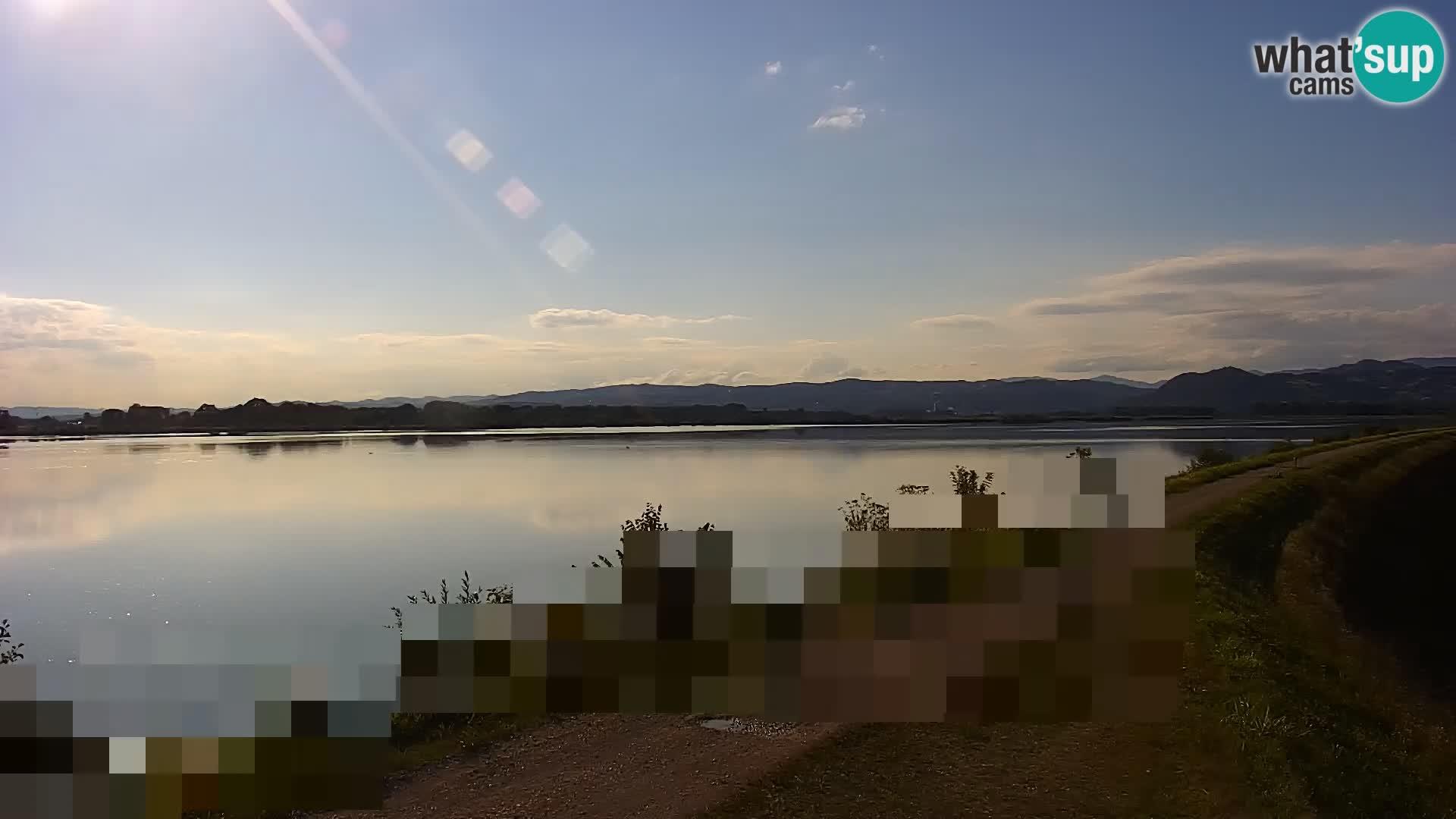 Live Webcam Brežice lake on Sava river – Slovenia