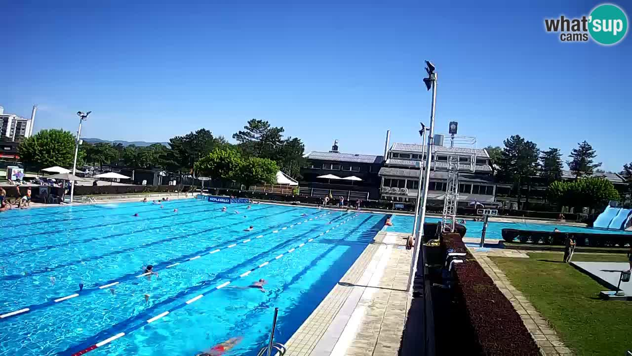 Kamera v živo Celje Letno kopališče  – glavni bazen