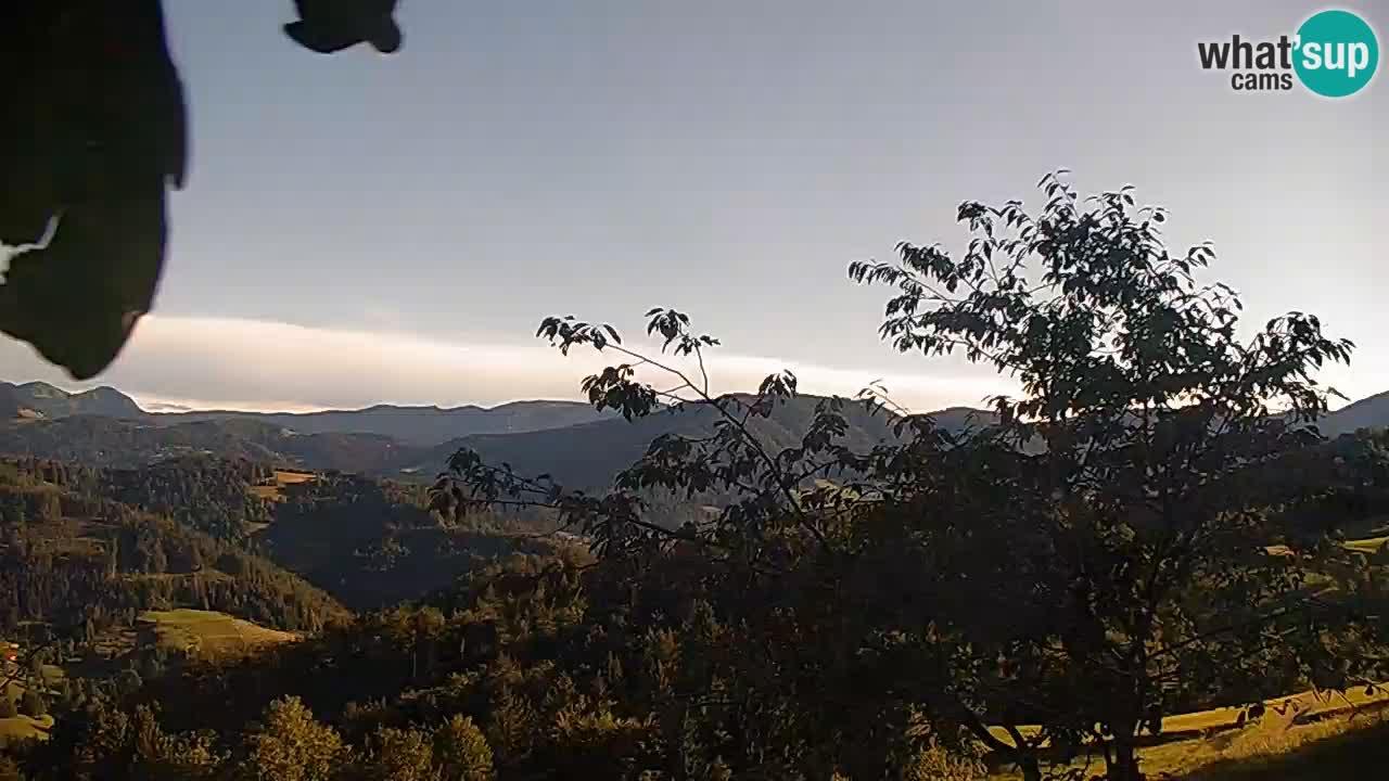 Webcam Kmetija Na Lanišah – Cerkno