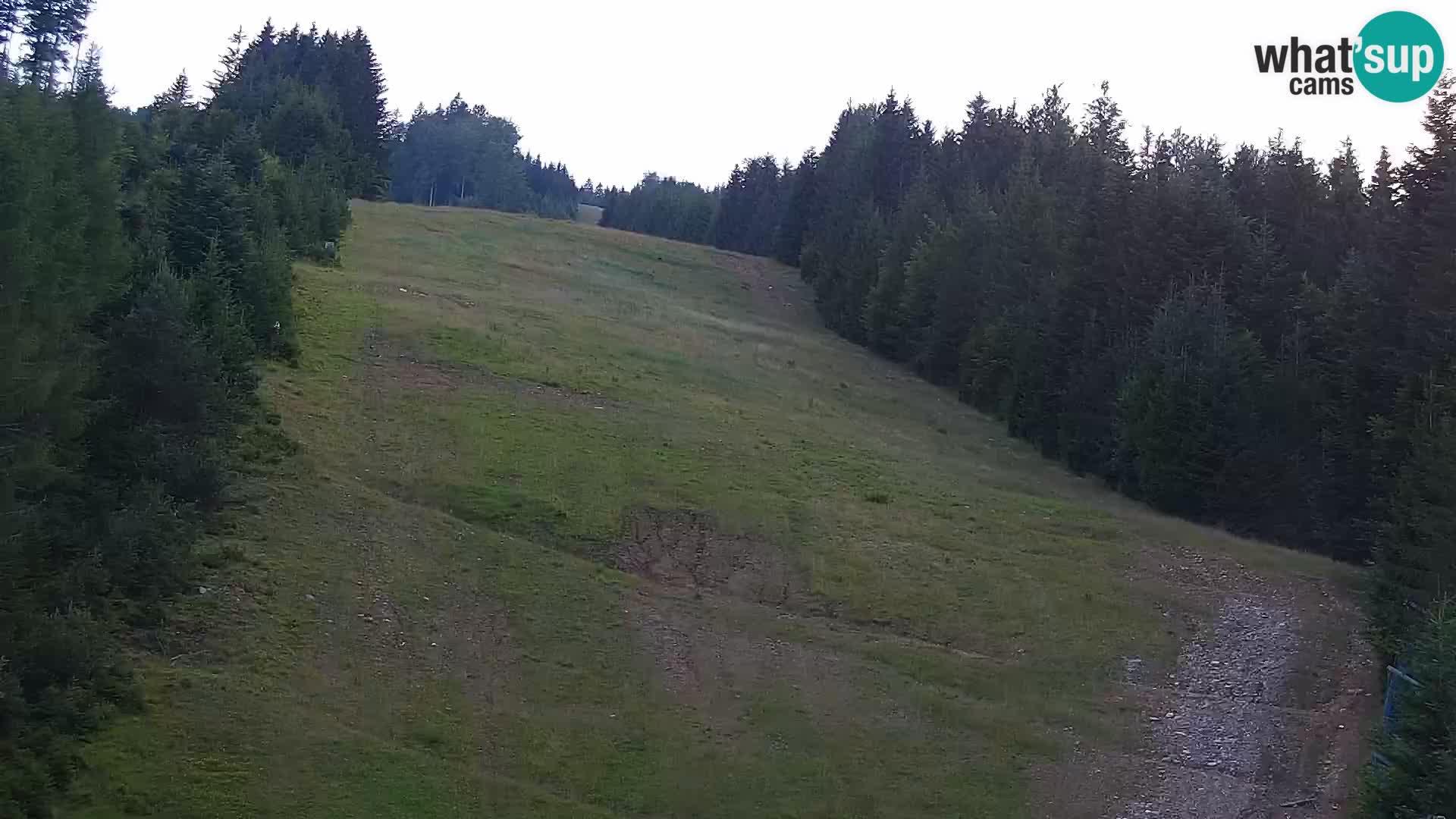Web kamera Rogla apartmani Dandi – Jurgovo