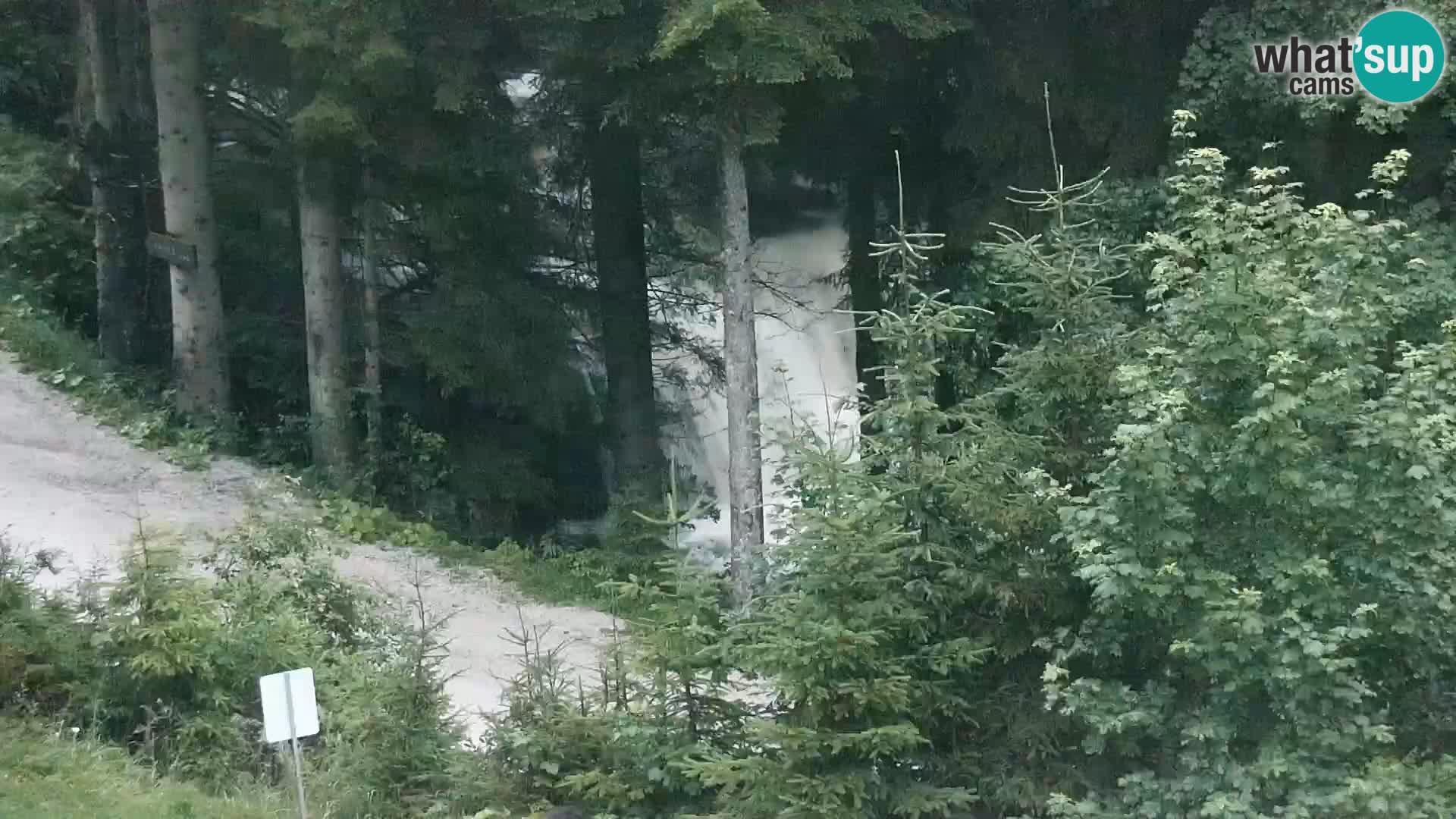 Livecam Rogla apartments Dandi – Jurgovo
