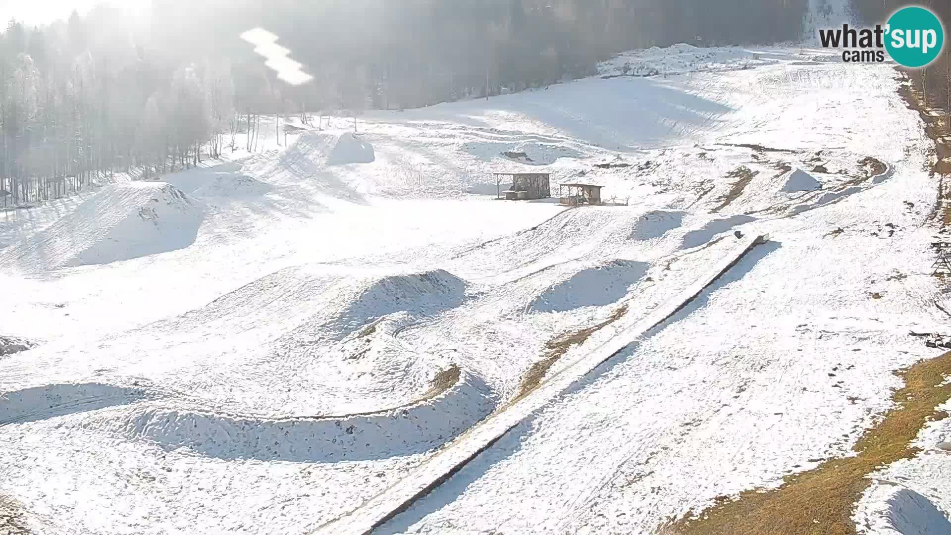 Spletna kamera Kočevje – MTB trail center v živo