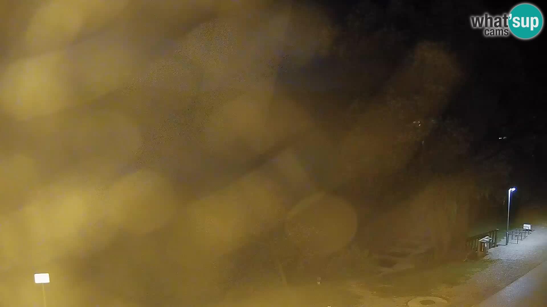 Live Webcam Kočevje lake