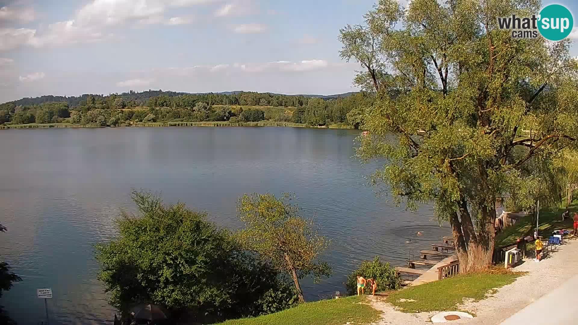 Livecam Lac Kočevje