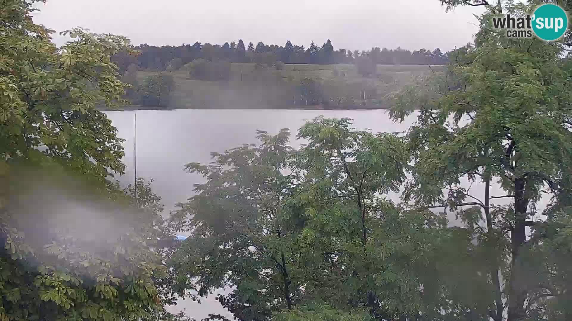 Web kamera Kočevje jezero – Slovenija