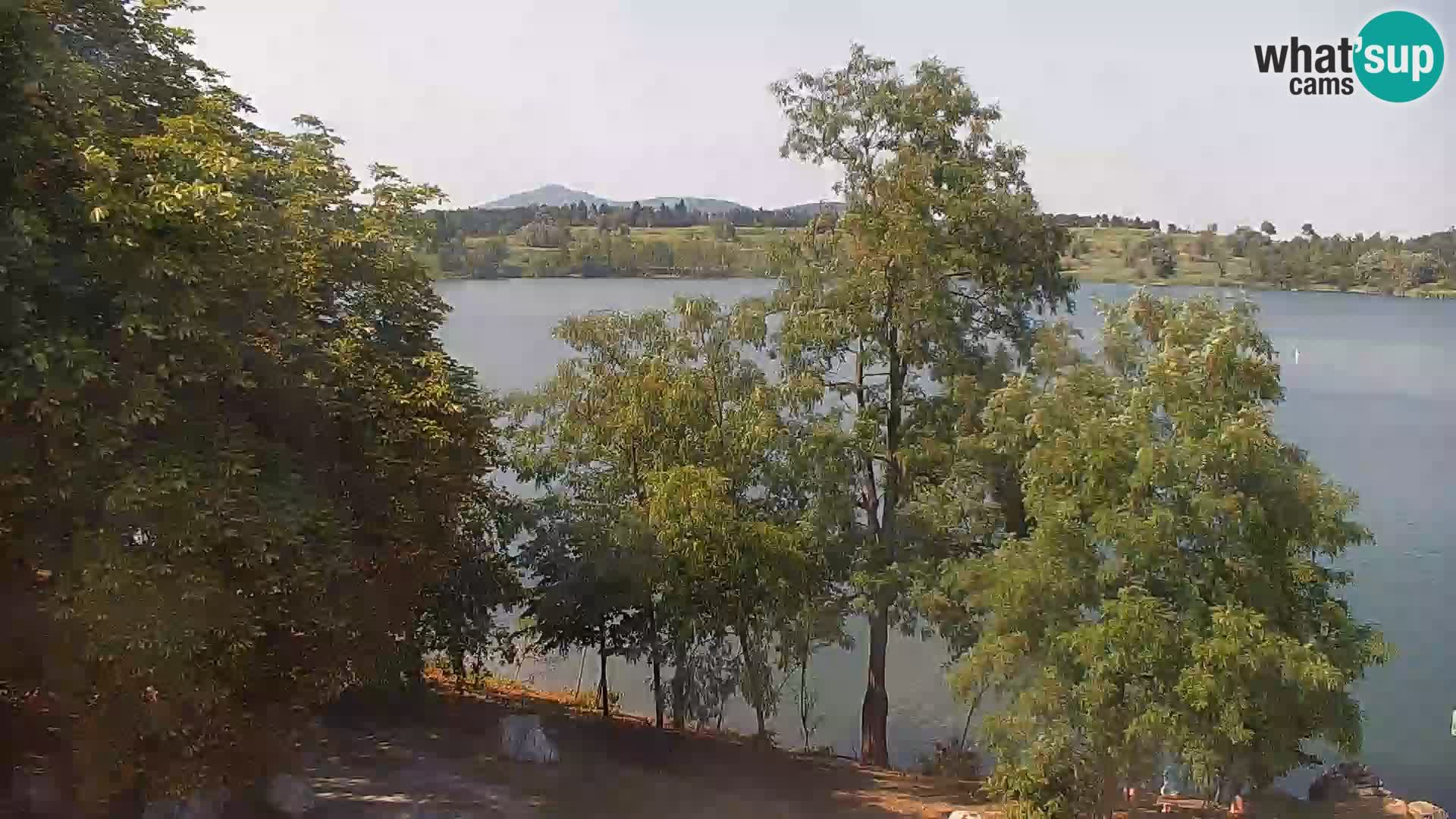 Live Webcam lago di Kočevje – Slovenia