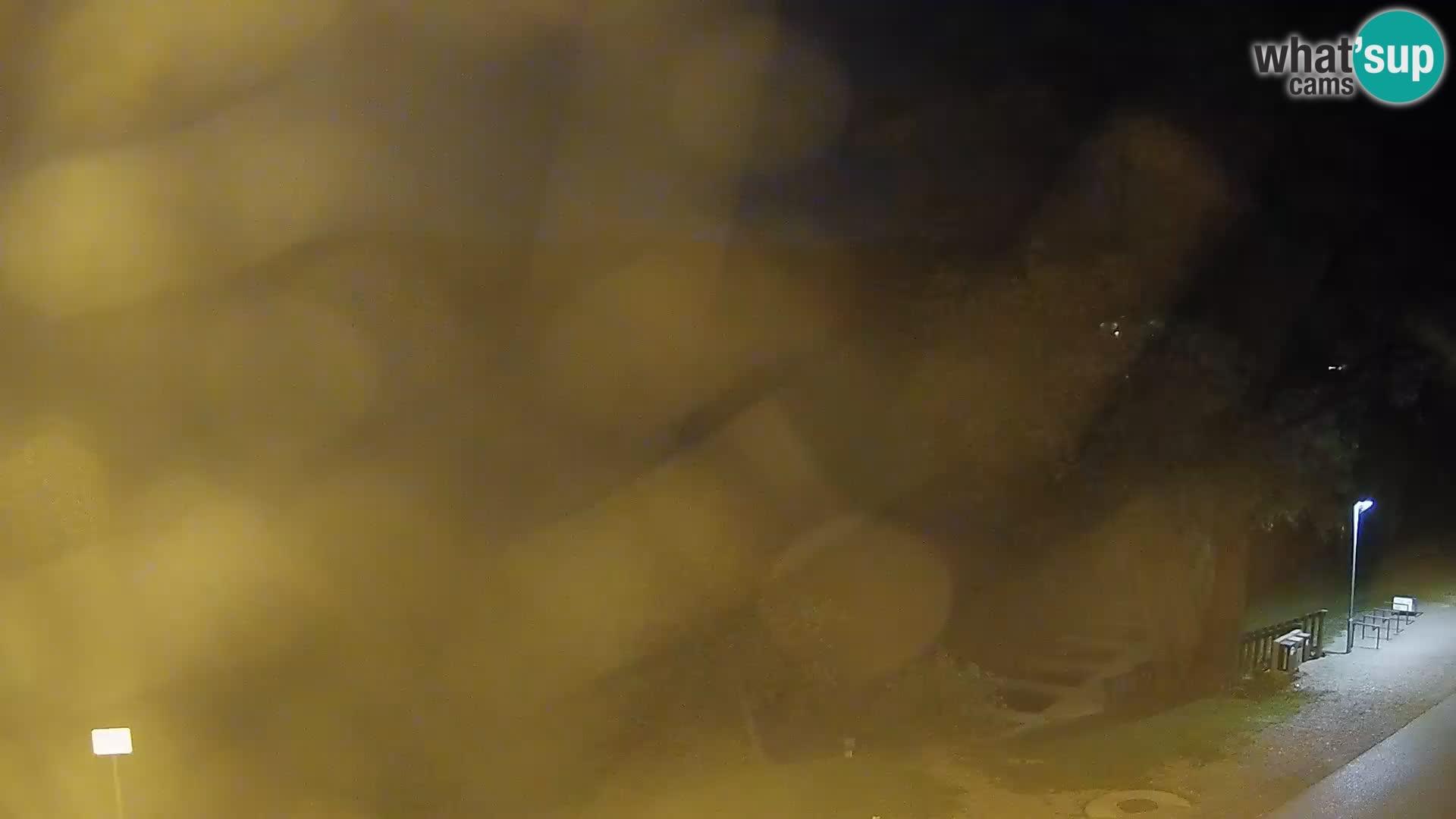 Kamera v živo Kočevsko jezero