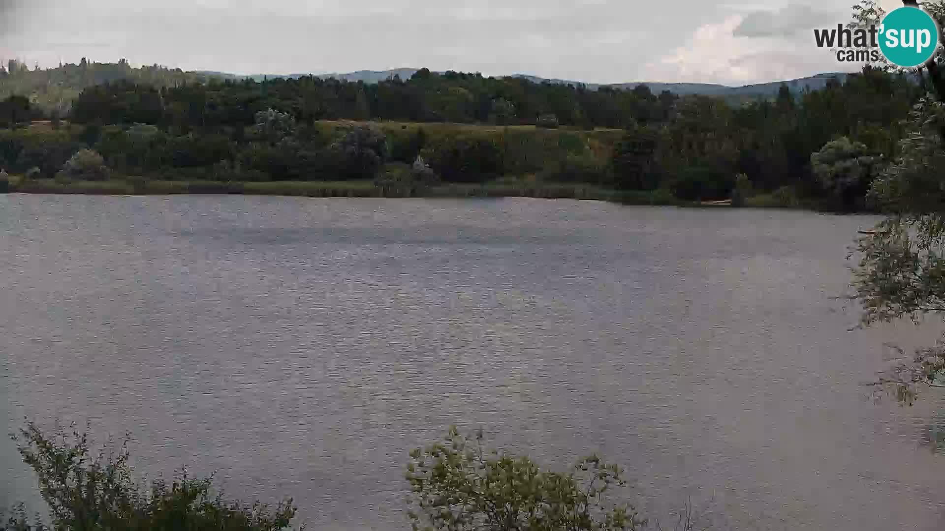 Live Webcam Kočevje-See – Slowenien