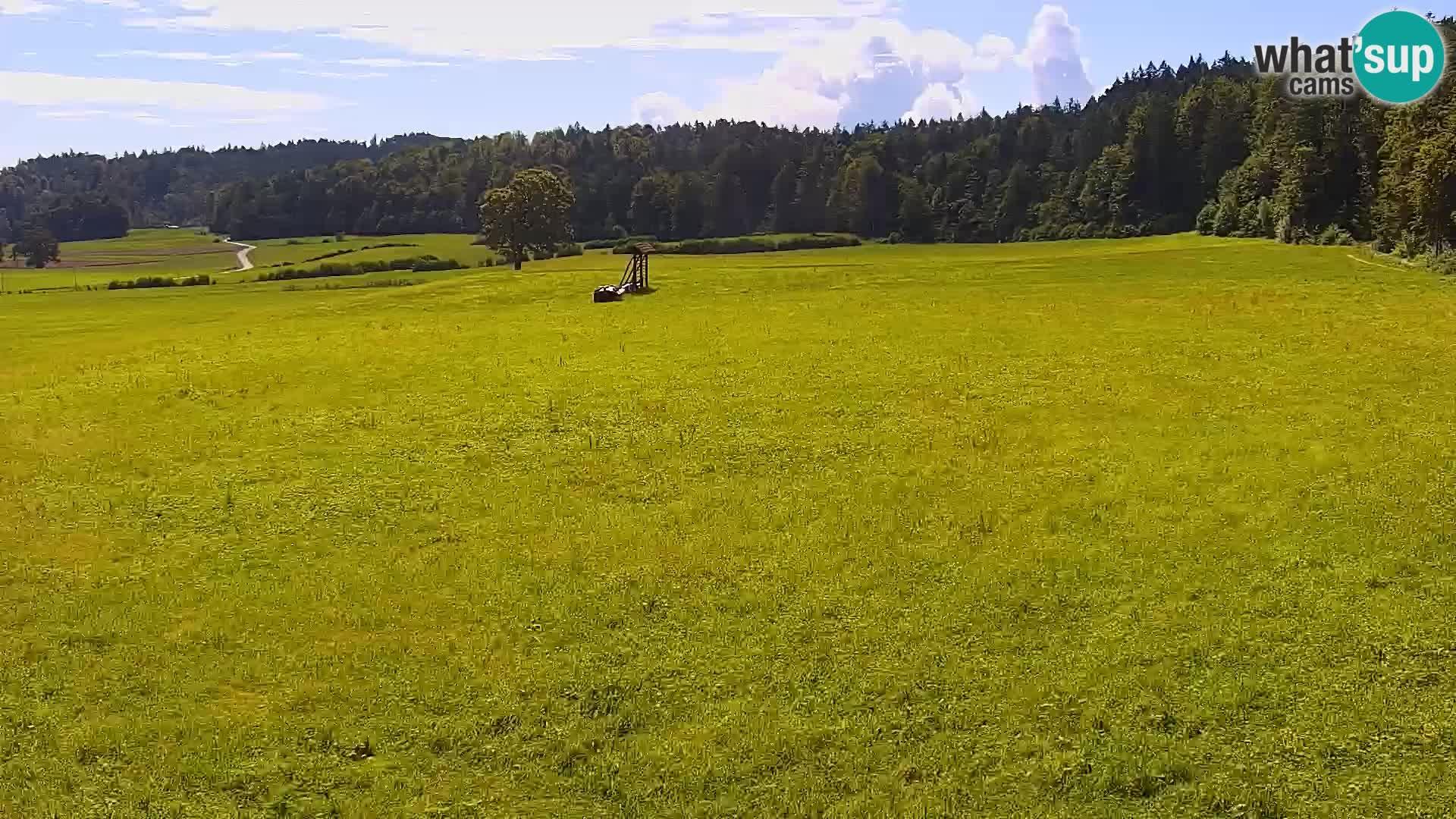 Nordijski center Bonovec