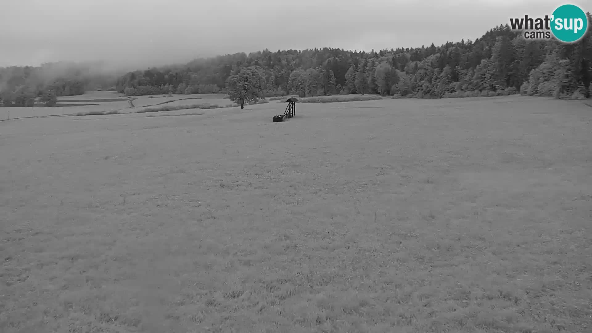 Nordijski centar Bonovec
