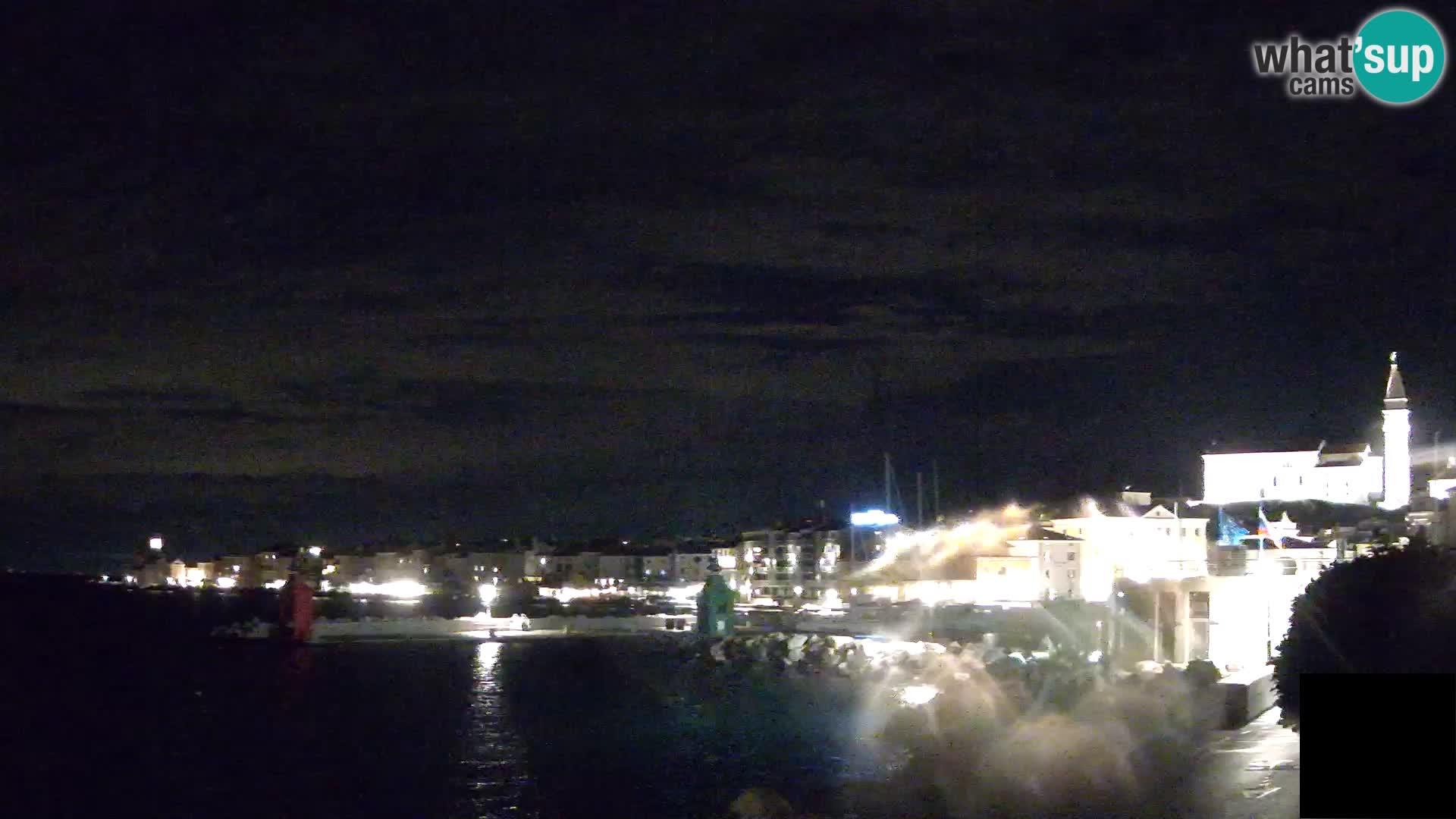 """Pirano – vista verso la Punta e il """"Mandrač"""""""