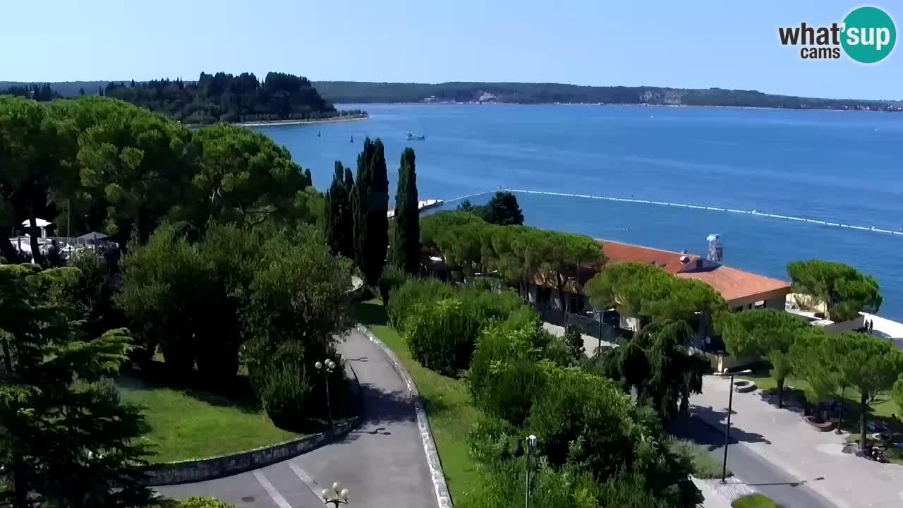 Web Kamera Portorož – Panorama