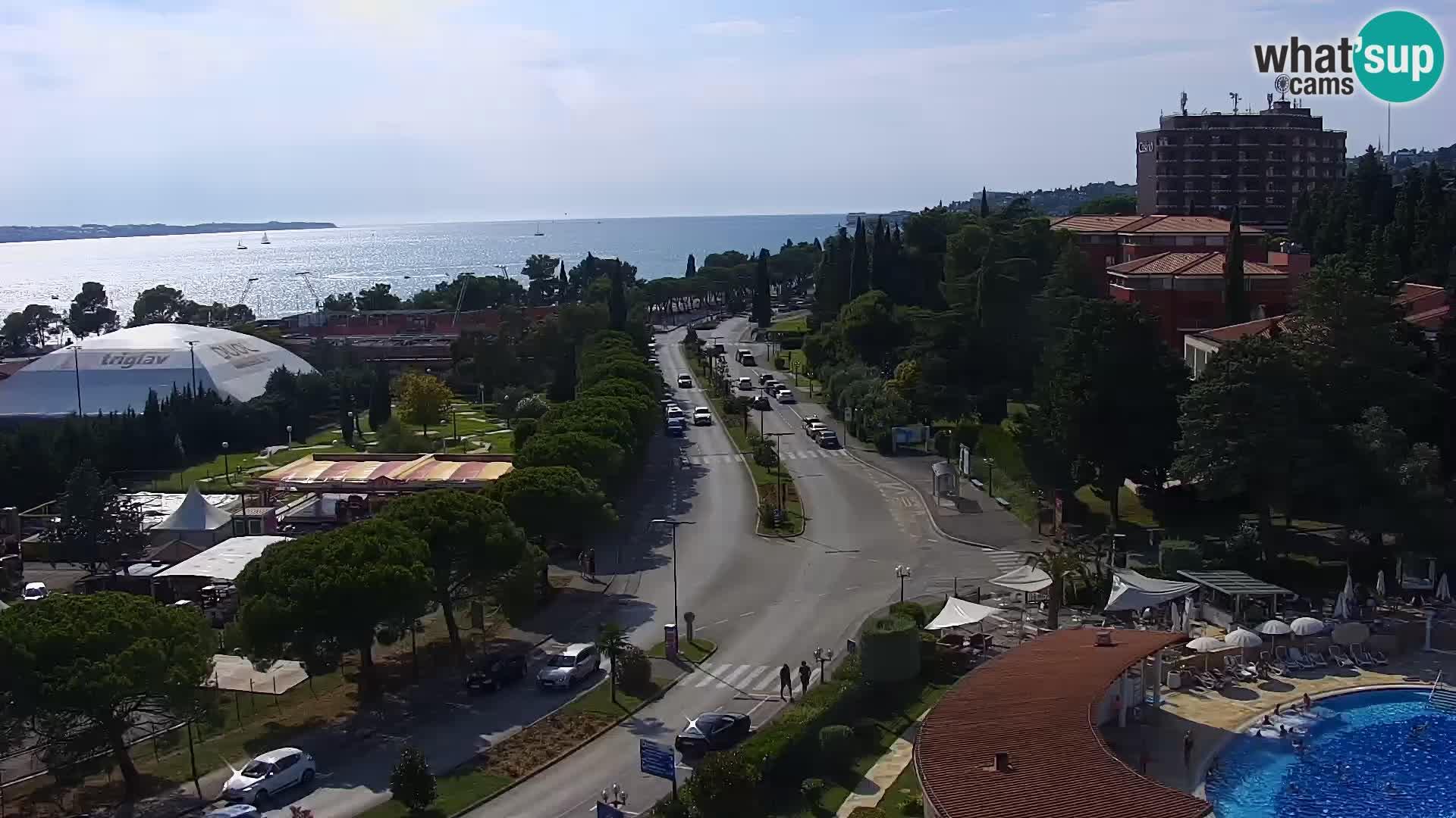 Marina Portorož in piranski zaliv
