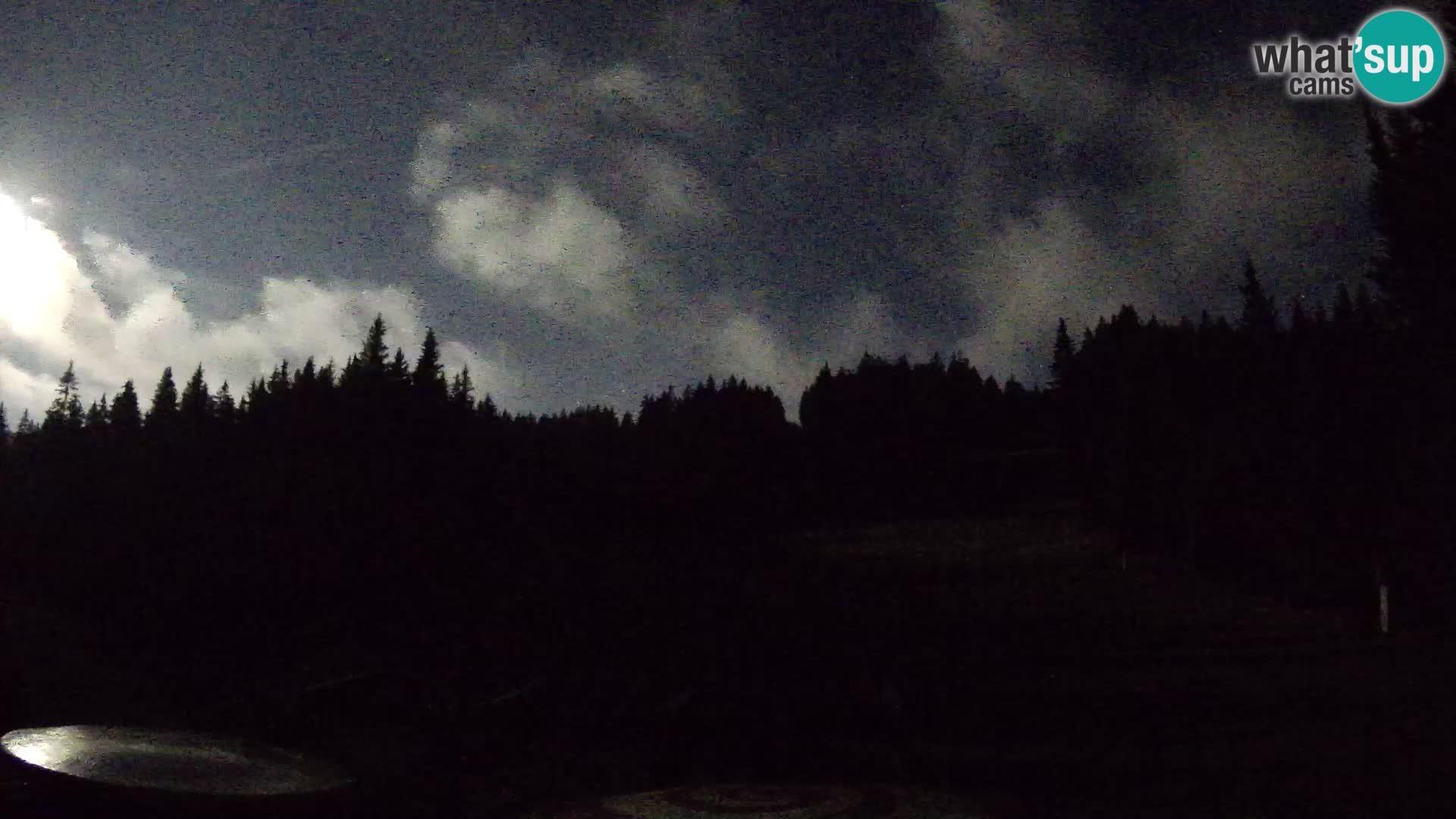 Station de ski Rogla Webcam Ostruščica pistes 1 et 2